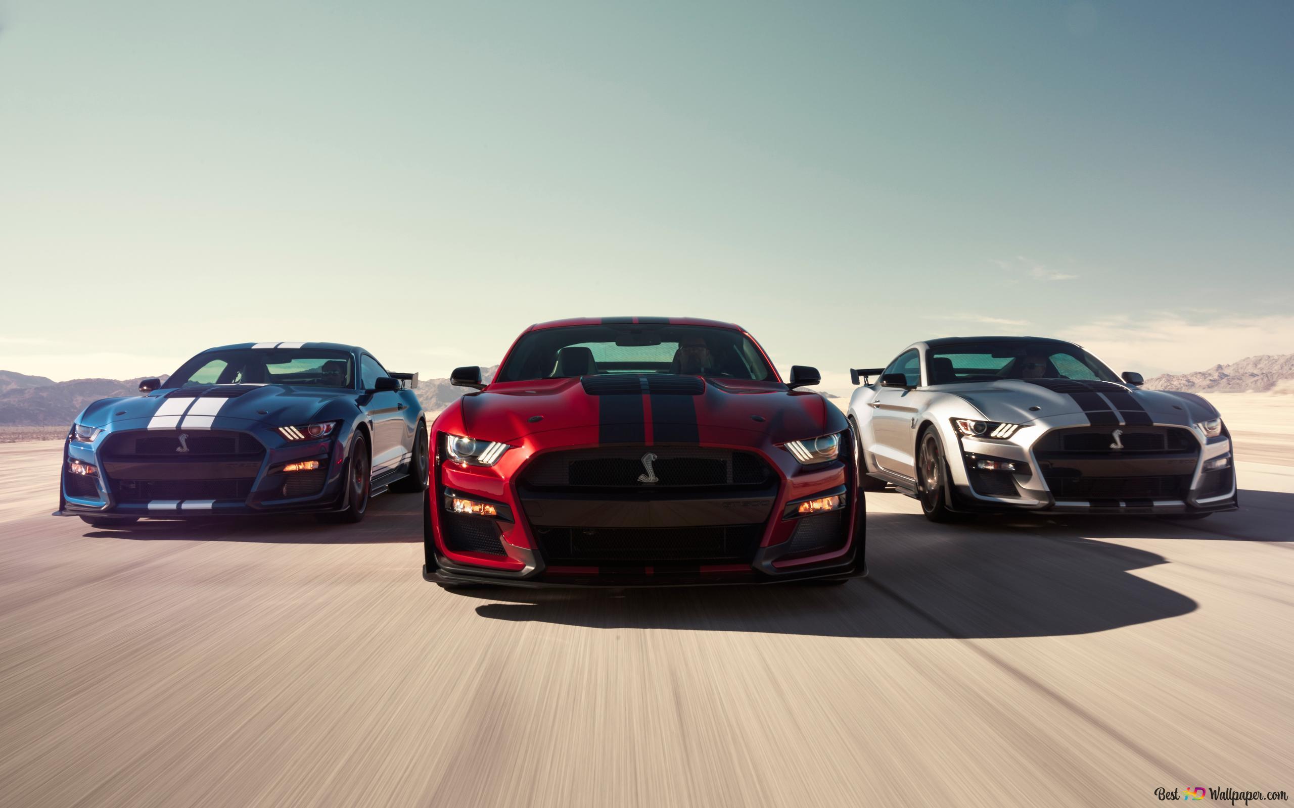 Descargar Fondo De Pantalla 2020 Ford Mustang Shelby Gt500 Hd