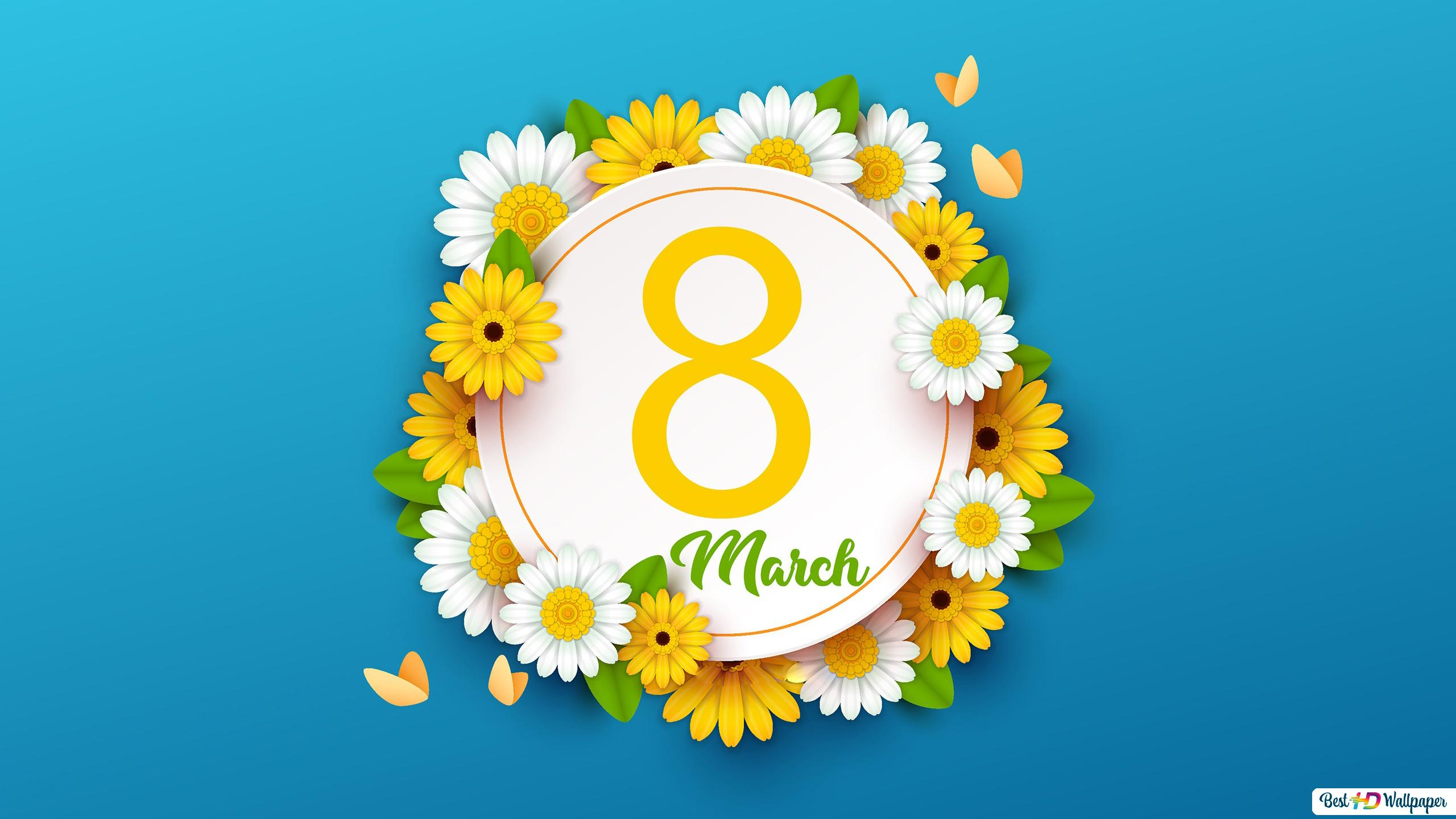 8th Of March Is Women S Day With White And Yellow Daisy Flowers