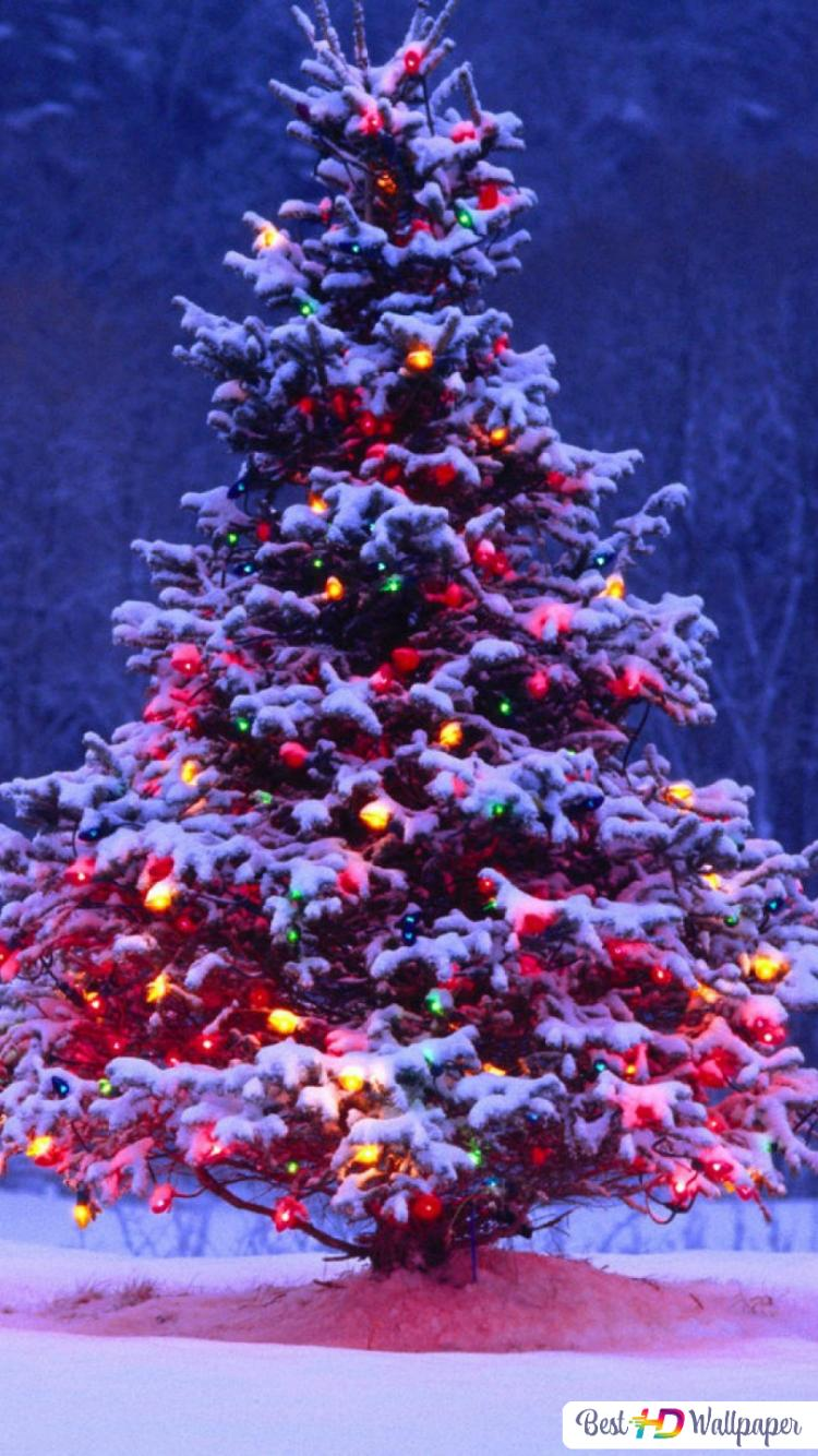 Immagini Di Natale Per Iphone 5.Best 50 Sfondo Iphone 6 Natale Sfondo Italiano