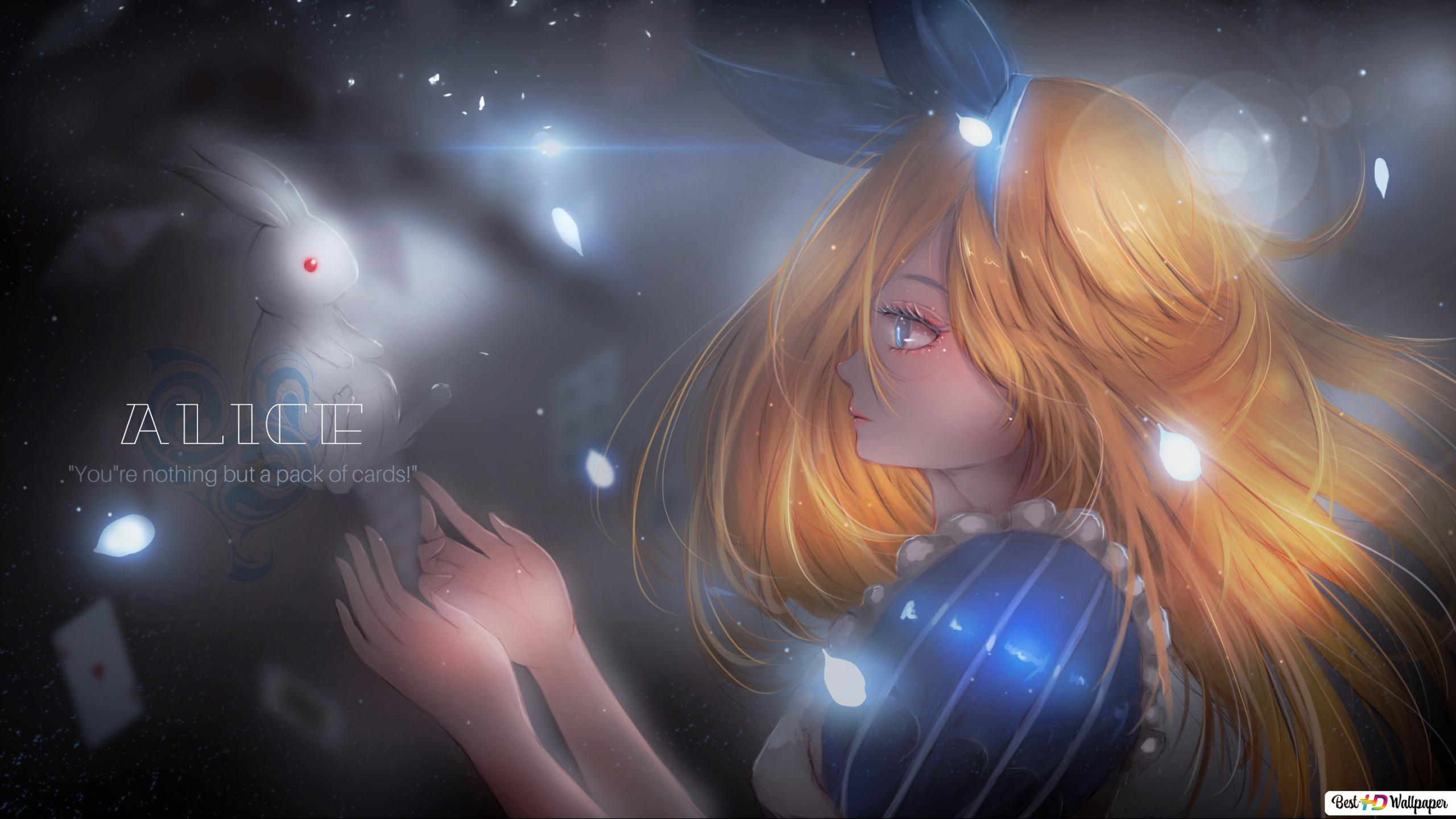 Alice In Wonderland Alice Bunny Hd Wallpaper Download
