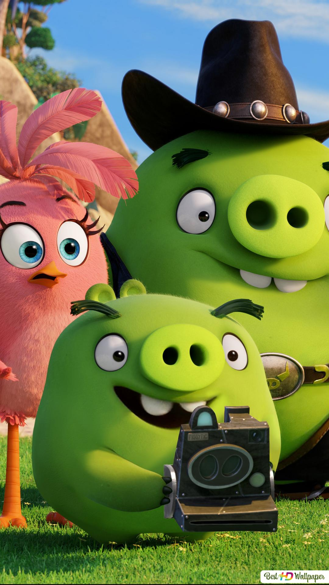 Angry birds - Stella and the pigs HD wallpaper download