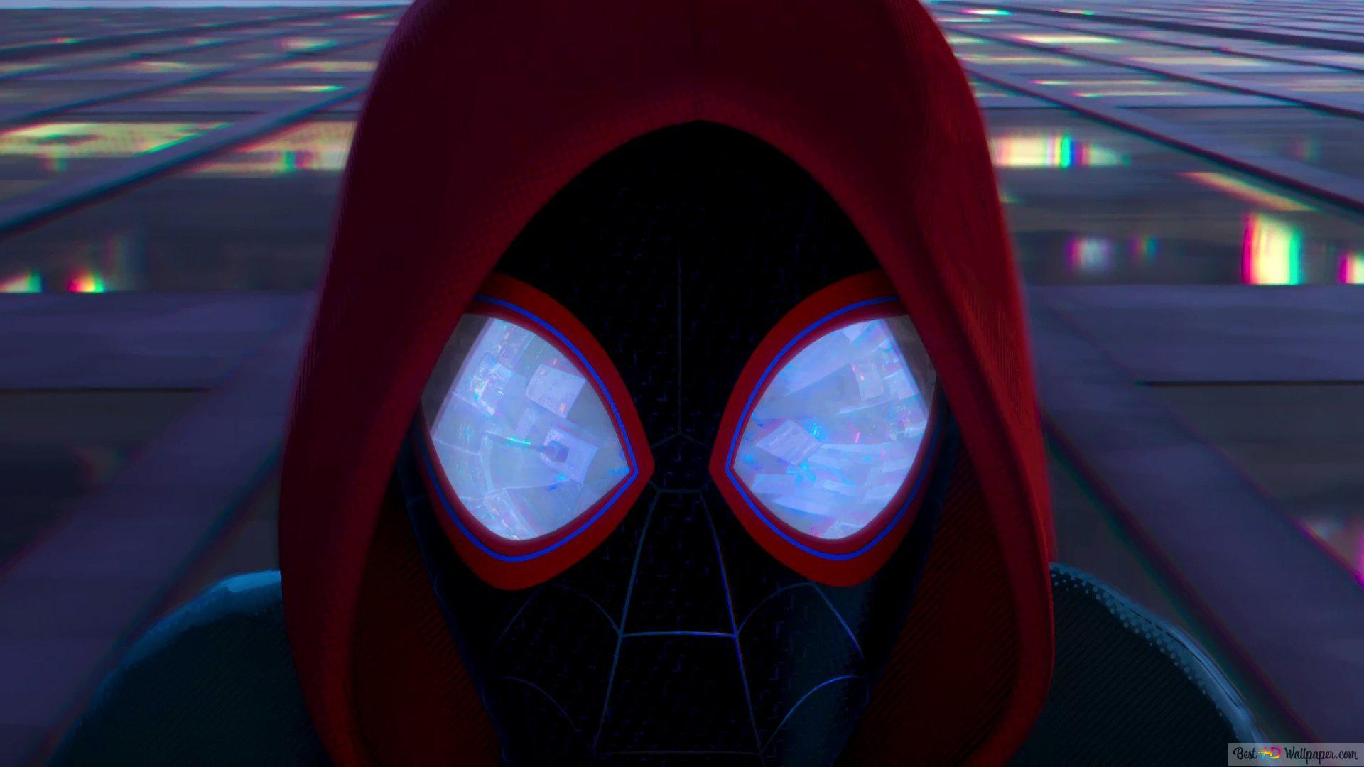 Animation Spider Man Into The Spider Verse Hd Wallpaper Download