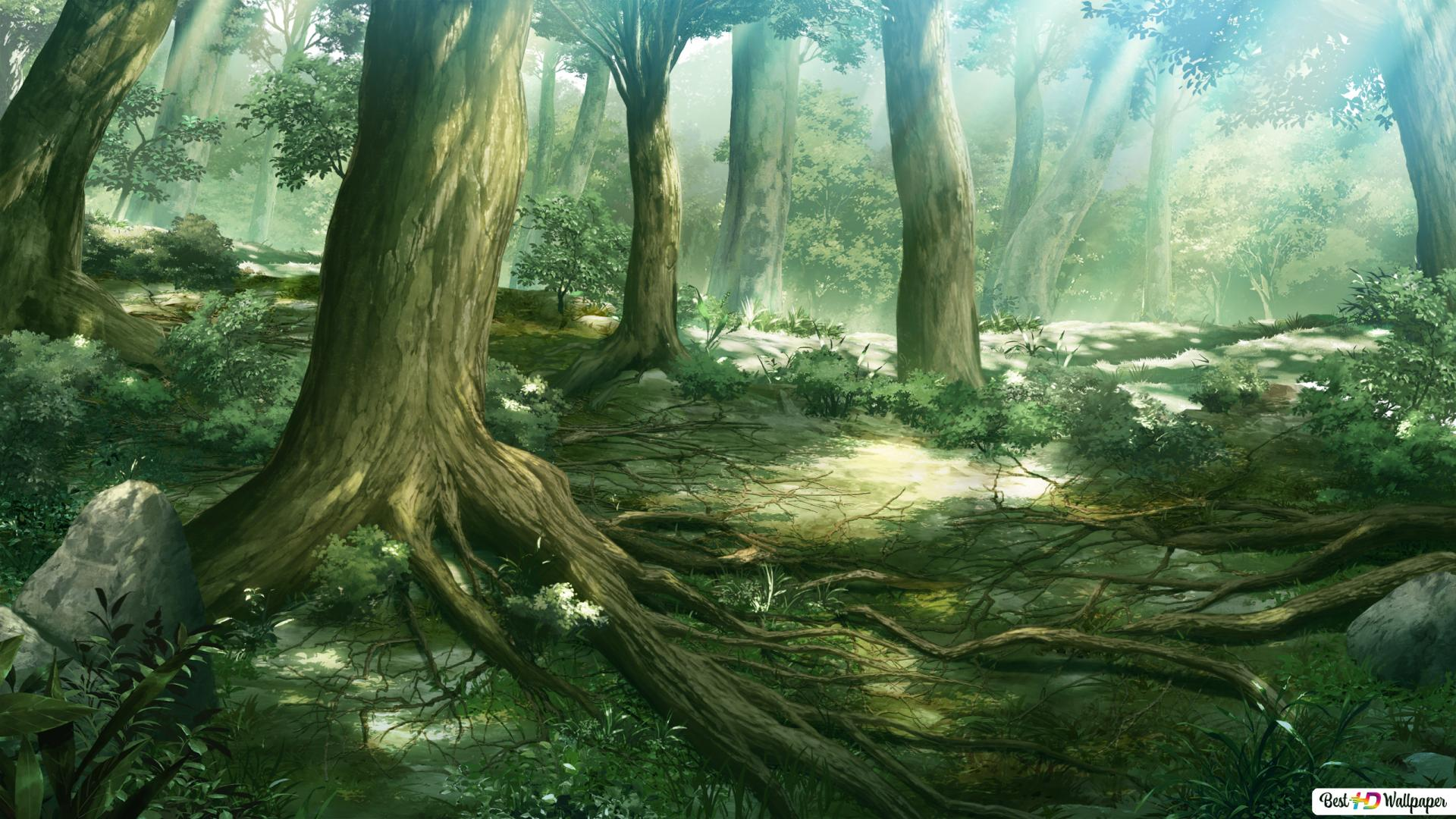 Anime Fantasy Forest Hd Wallpaper Download