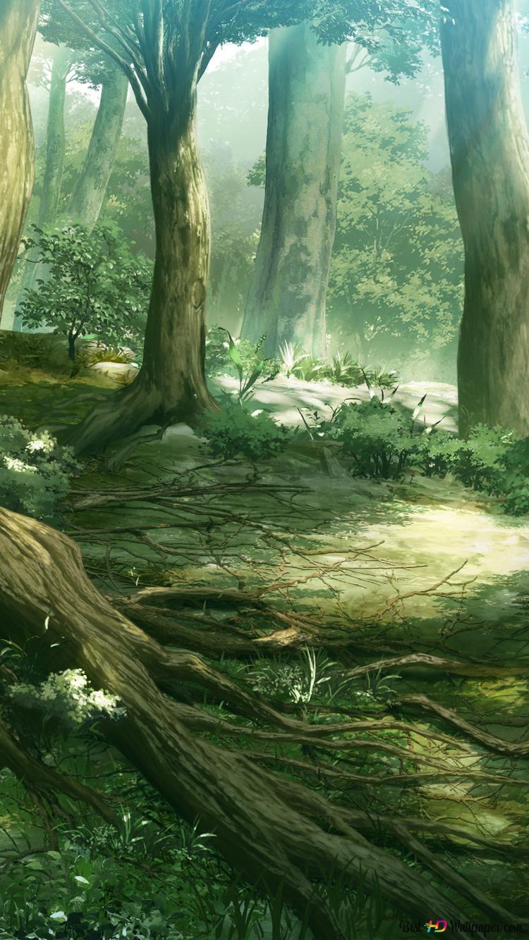 アニメファンタジーの森 Hd壁紙のダウンロード