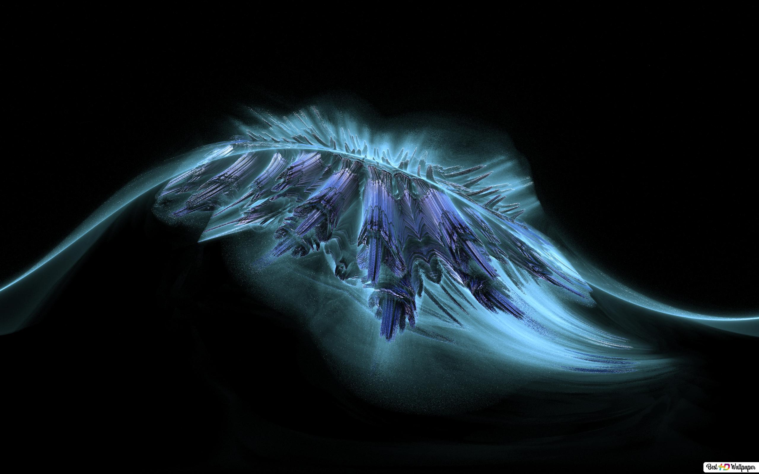 Artistic Blue Feather Hd Wallpaper Download