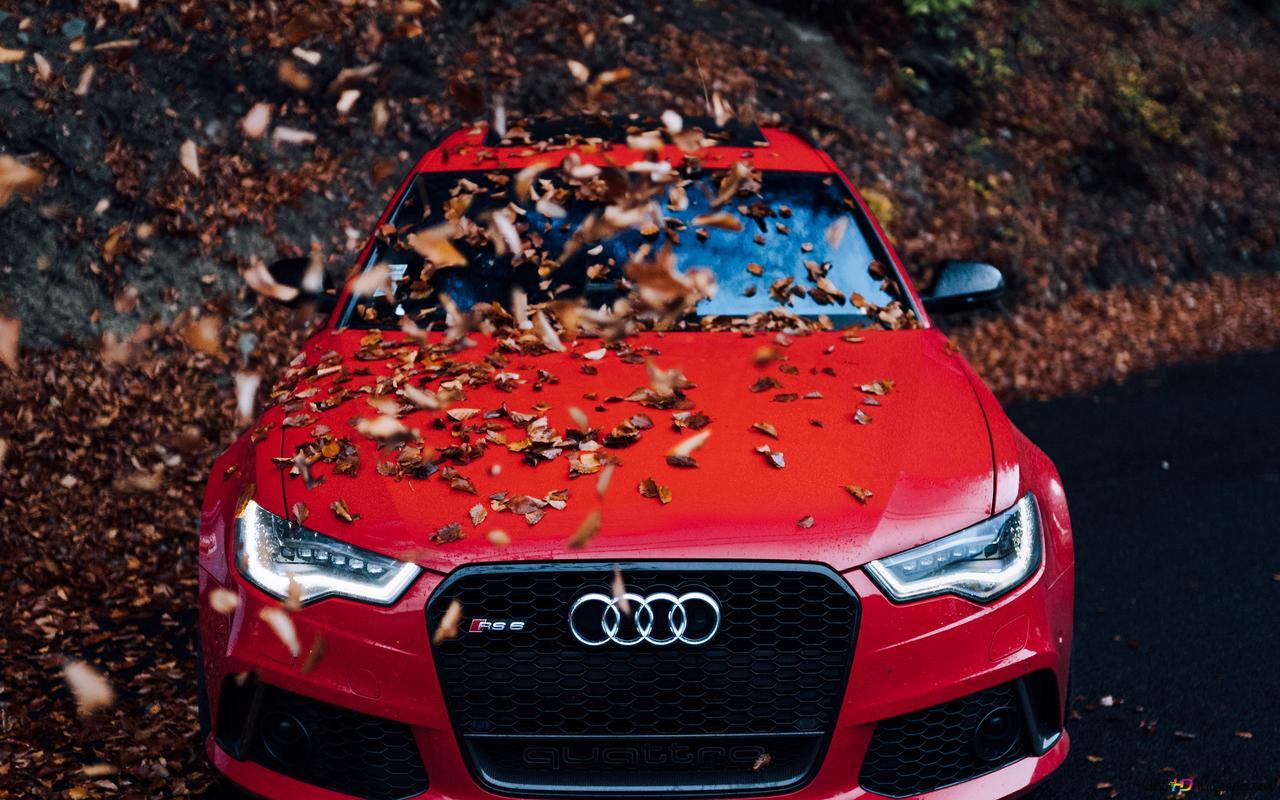 Audi Rouge Hd Fond D Ecran Telecharger
