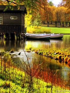 Autumn and nature HD wallpaper download