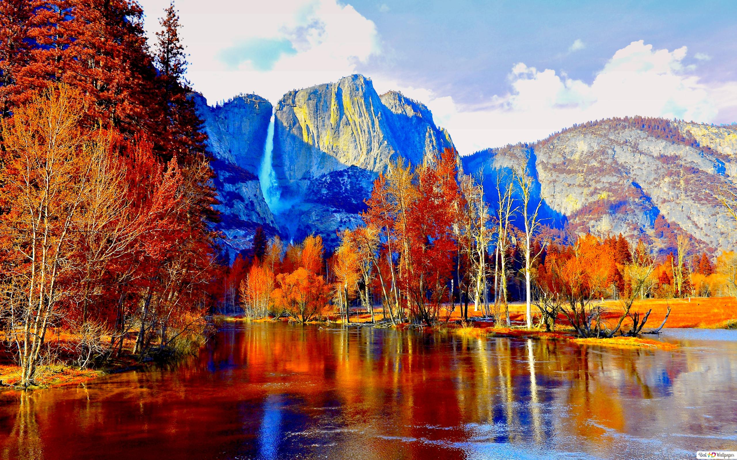 Autumn Trees In The Mountains Hd Wallpaper Download