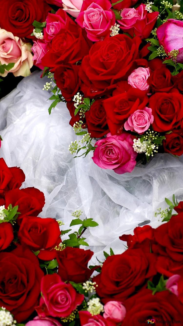 バレンタインデー 赤とピンクのバラのハート Hd壁紙のダウンロード