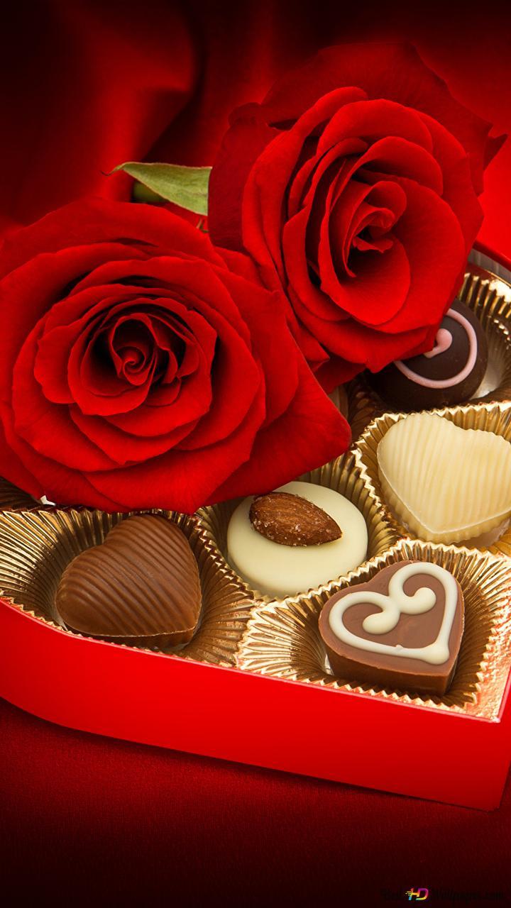 バレンタインデー チョコレートボックスとバラ Hd壁紙のダウンロード