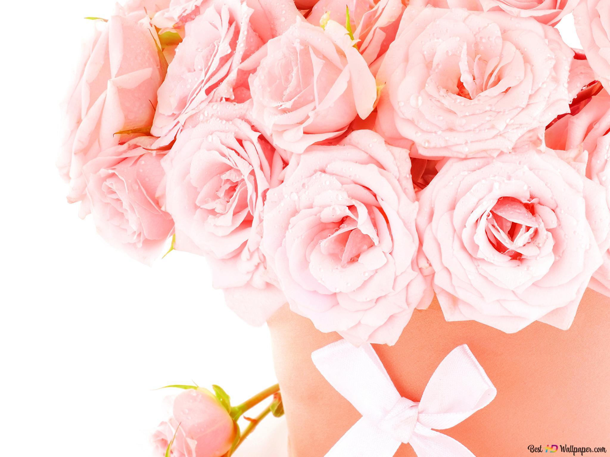 バレンタインデー ソフトピンクのバラの装飾 Hd壁紙のダウンロード