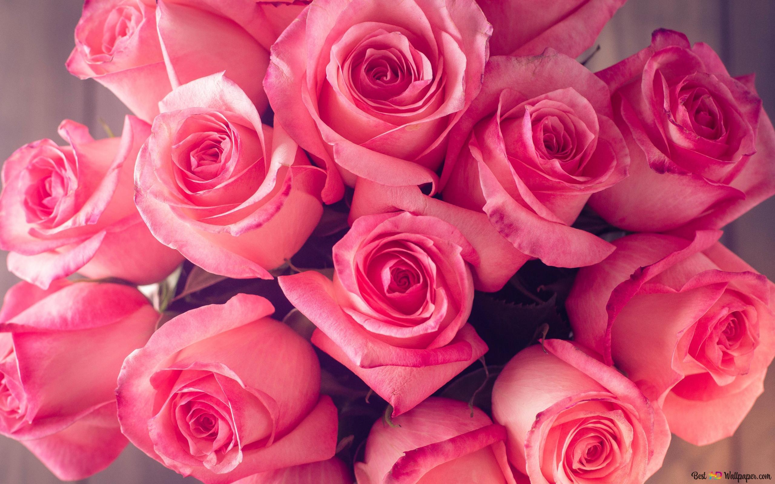 バレンタインの日 ピンクのバラの花束 Hd壁紙のダウンロード