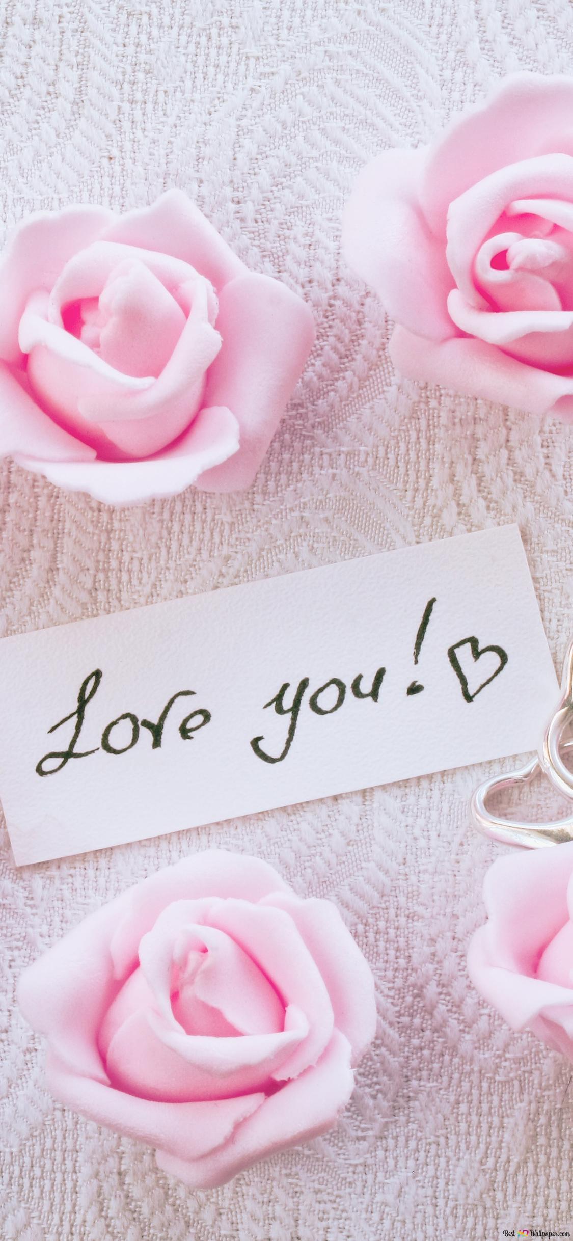 バレンタインの日 ピンクのバラと恋ノート Hd壁紙のダウンロード
