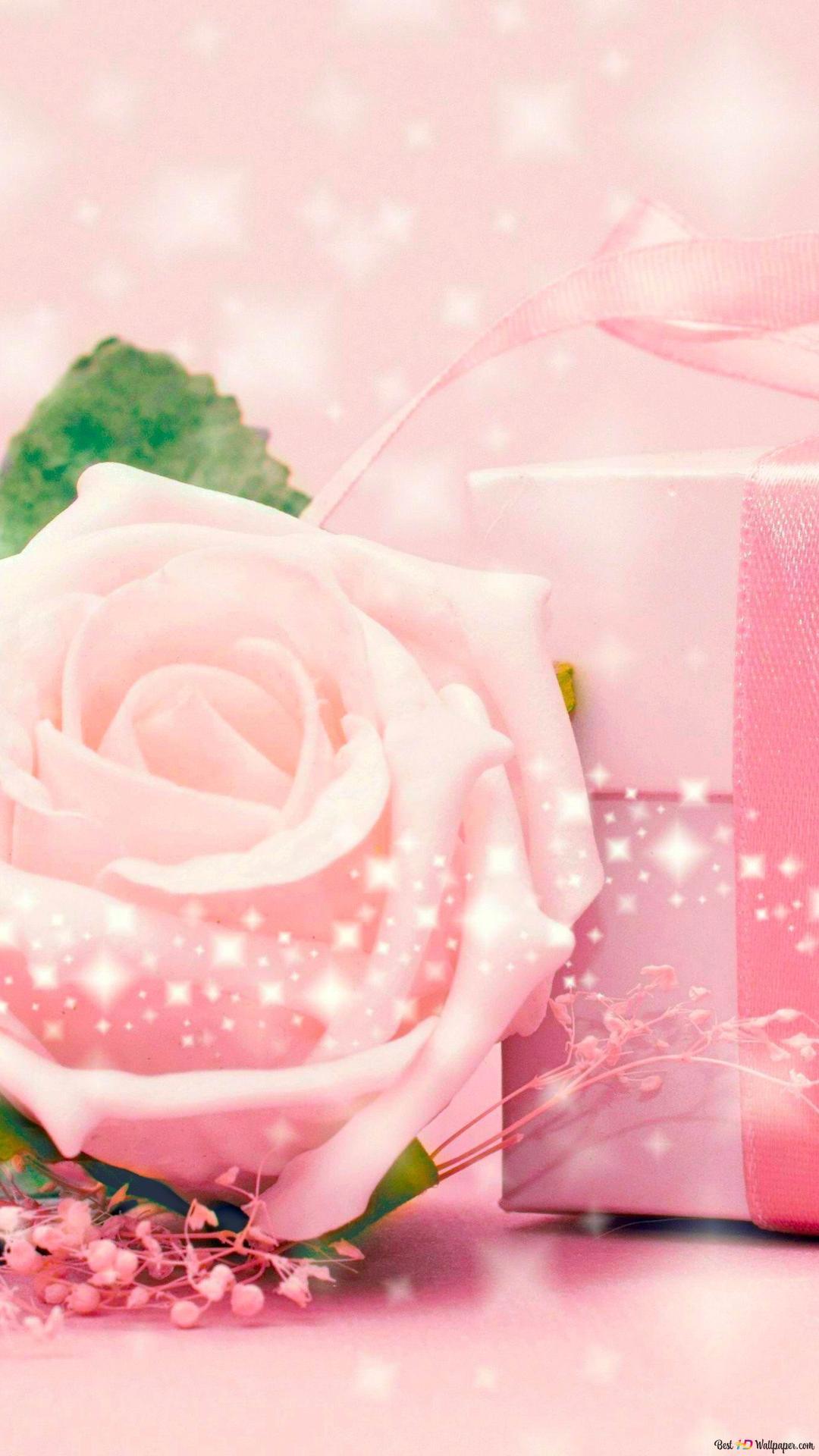 バレンタインの日 ピンクのバラと贈り物 Hd壁紙のダウンロード