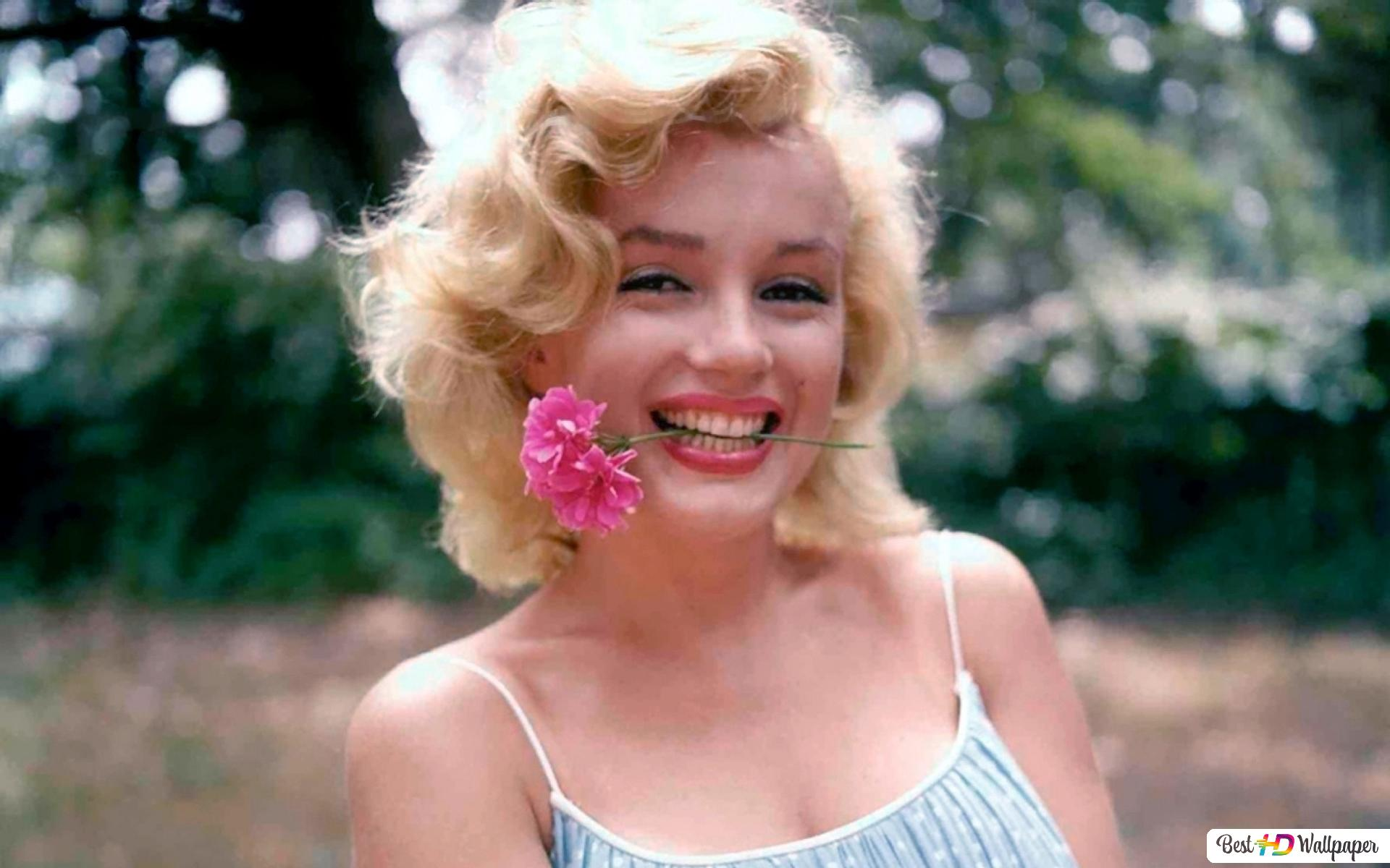 Beautiful Actress Marilyn Monroe Biting A Pink Flower Hd Wallpaper