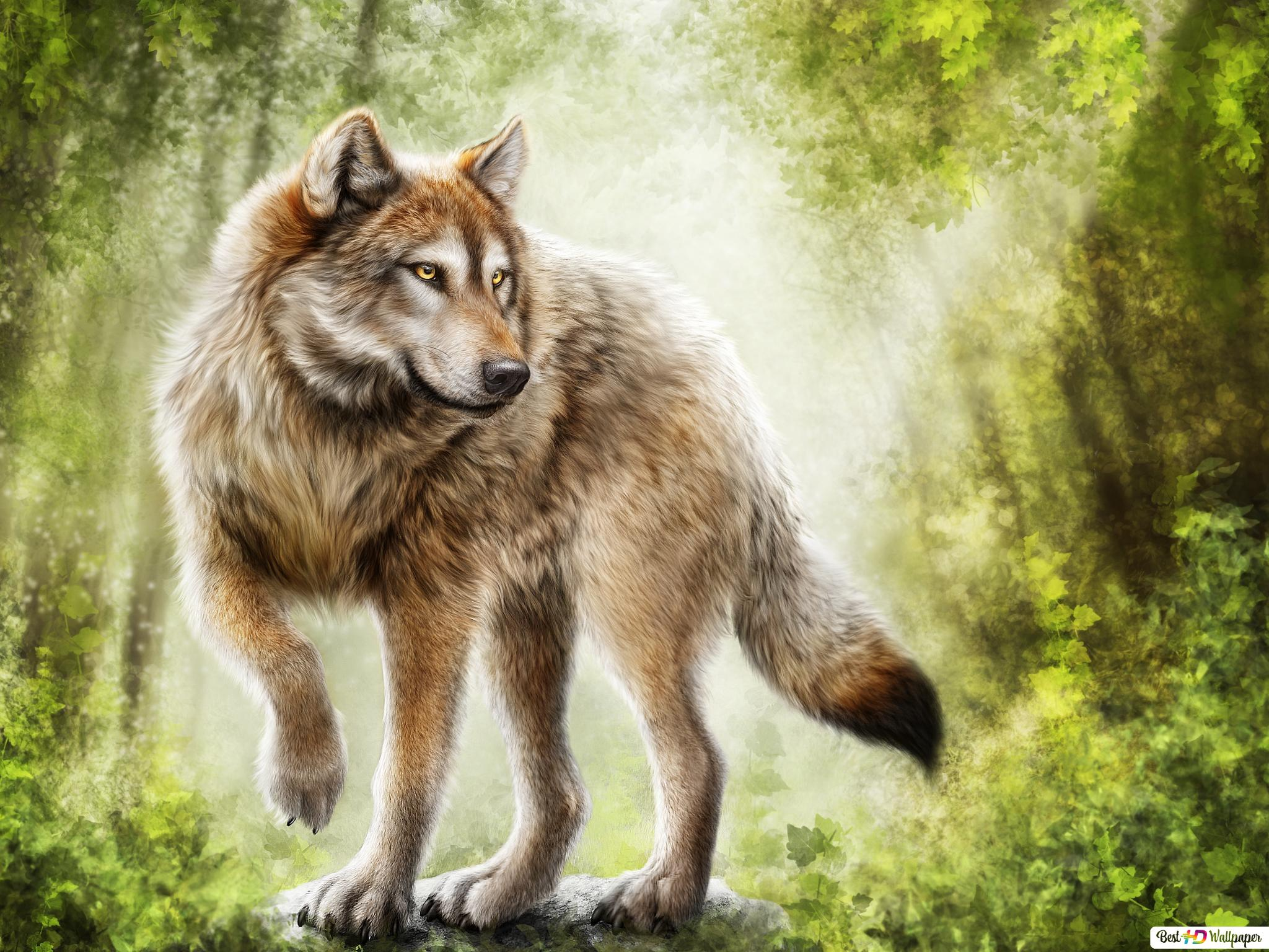 Beautiful Painting of Timber Wolf HD