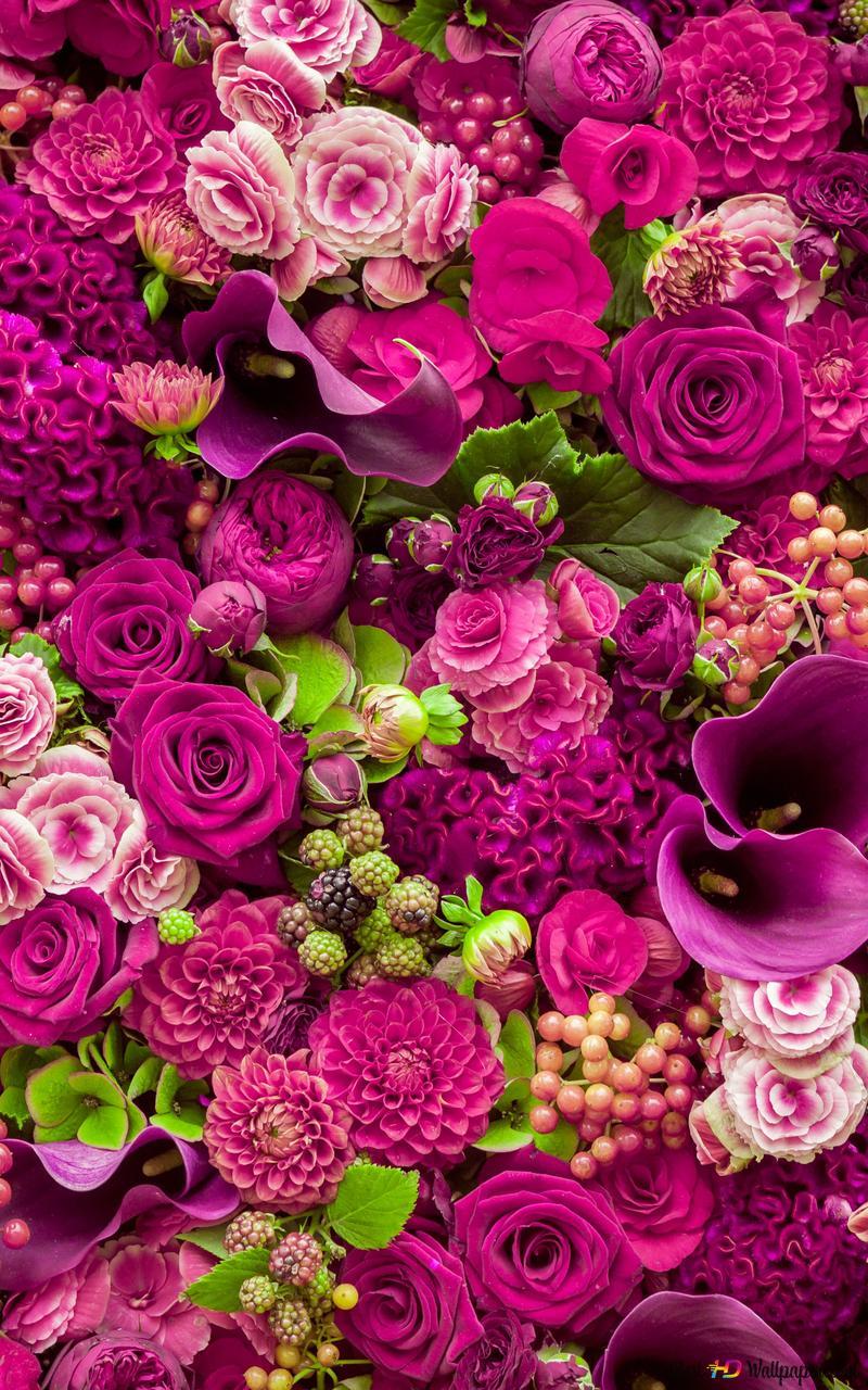 Beautiful Pink Flowers Bunch Hd Wallpaper Download
