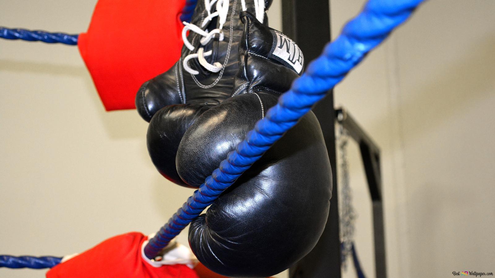 Black Boxing Gloves Hd Wallpaper Download
