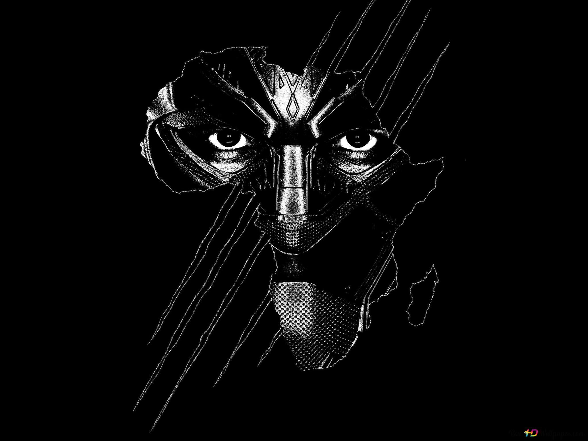 Black Panther Marvel Super Heros Hd Fond D Ecran Telecharger