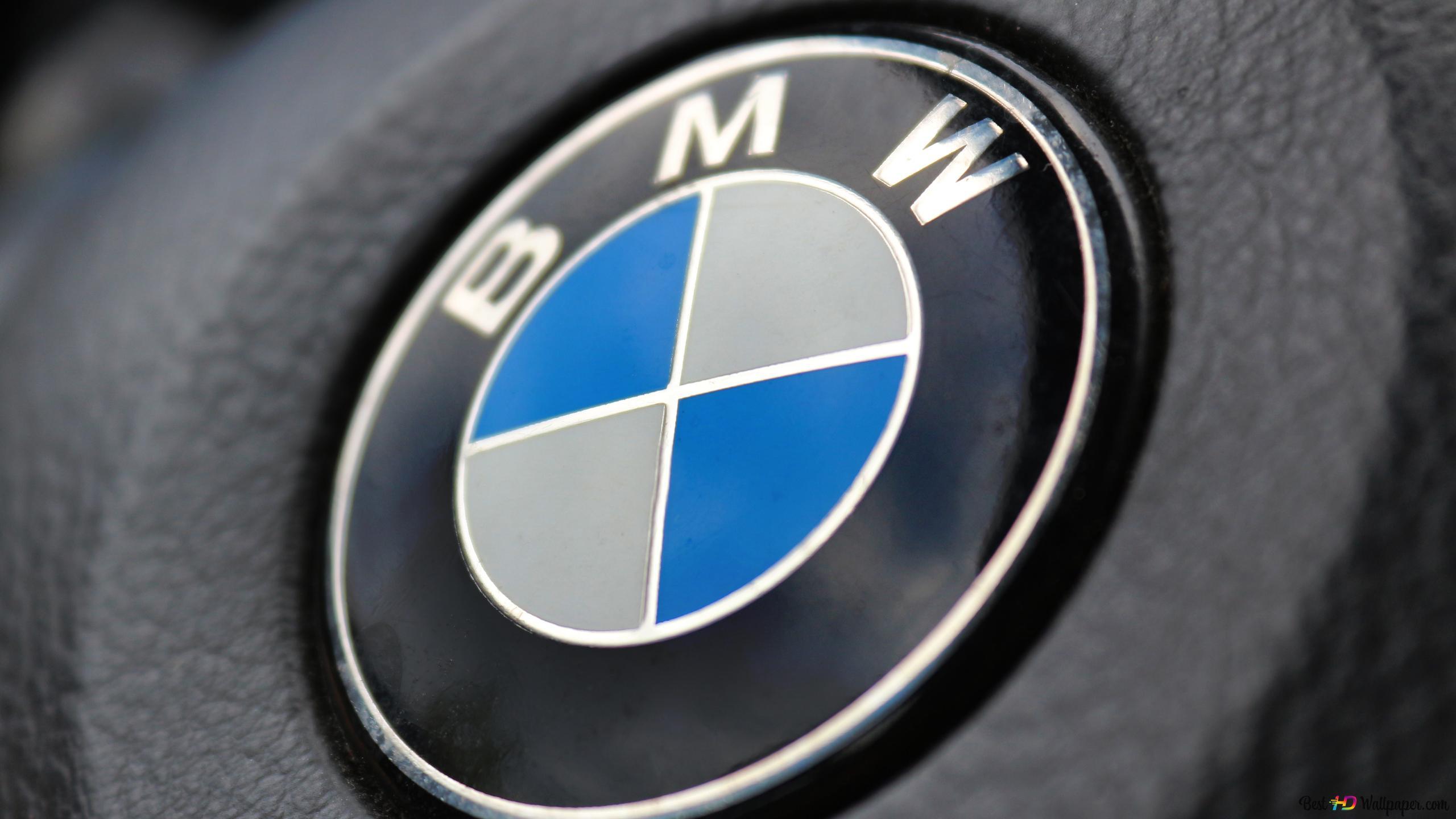 Bmw Logo Wallpaper Hd 2560x1440