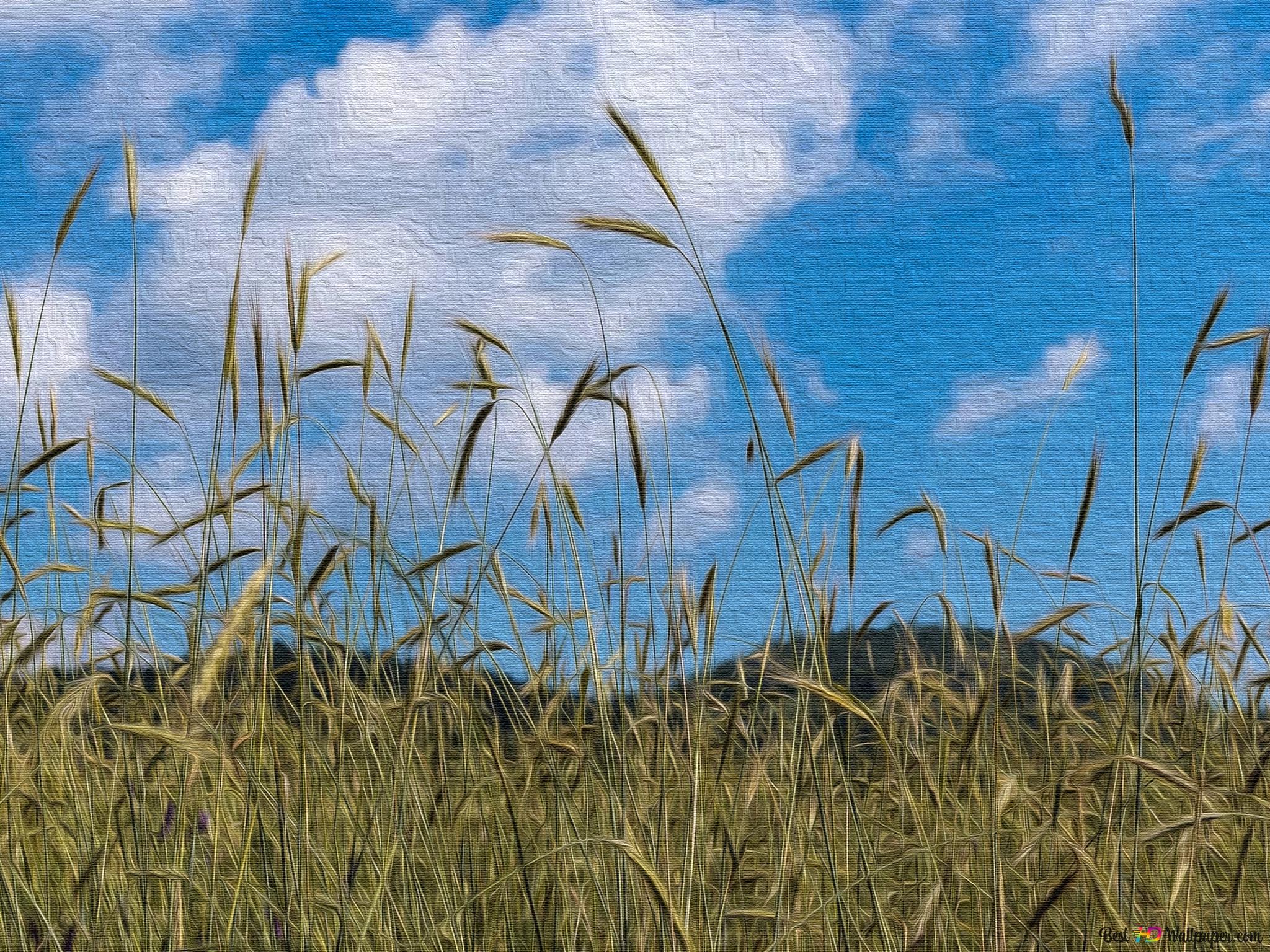Buğday Tarlası Tuval Hd Duvar Kağıdı Indir