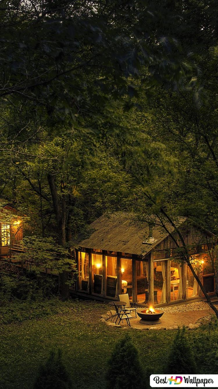 Cabin In The Woods At Night Hd Wallpaper Download