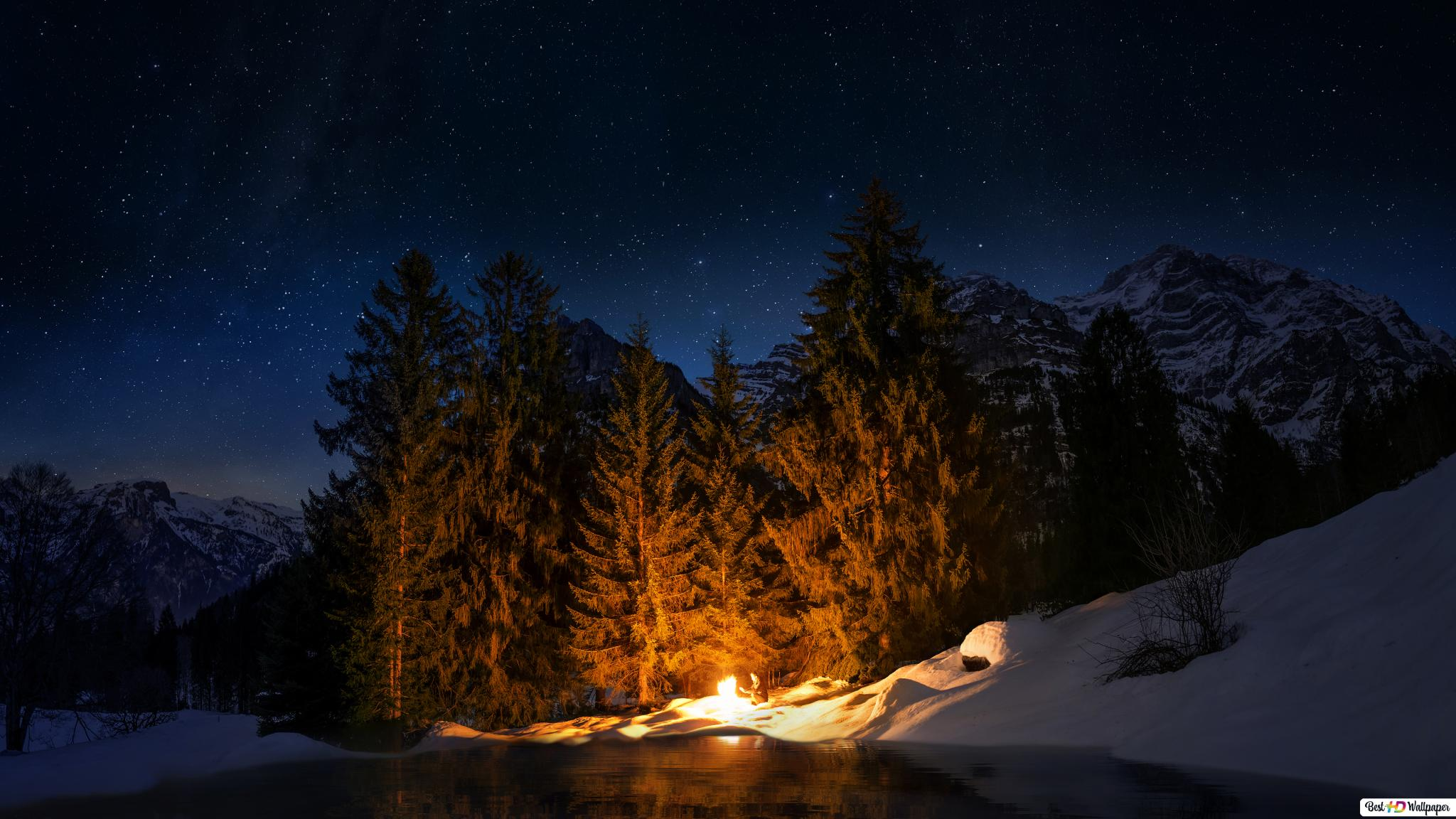 Camp Fire In Night Forest Hd Wallpaper Download