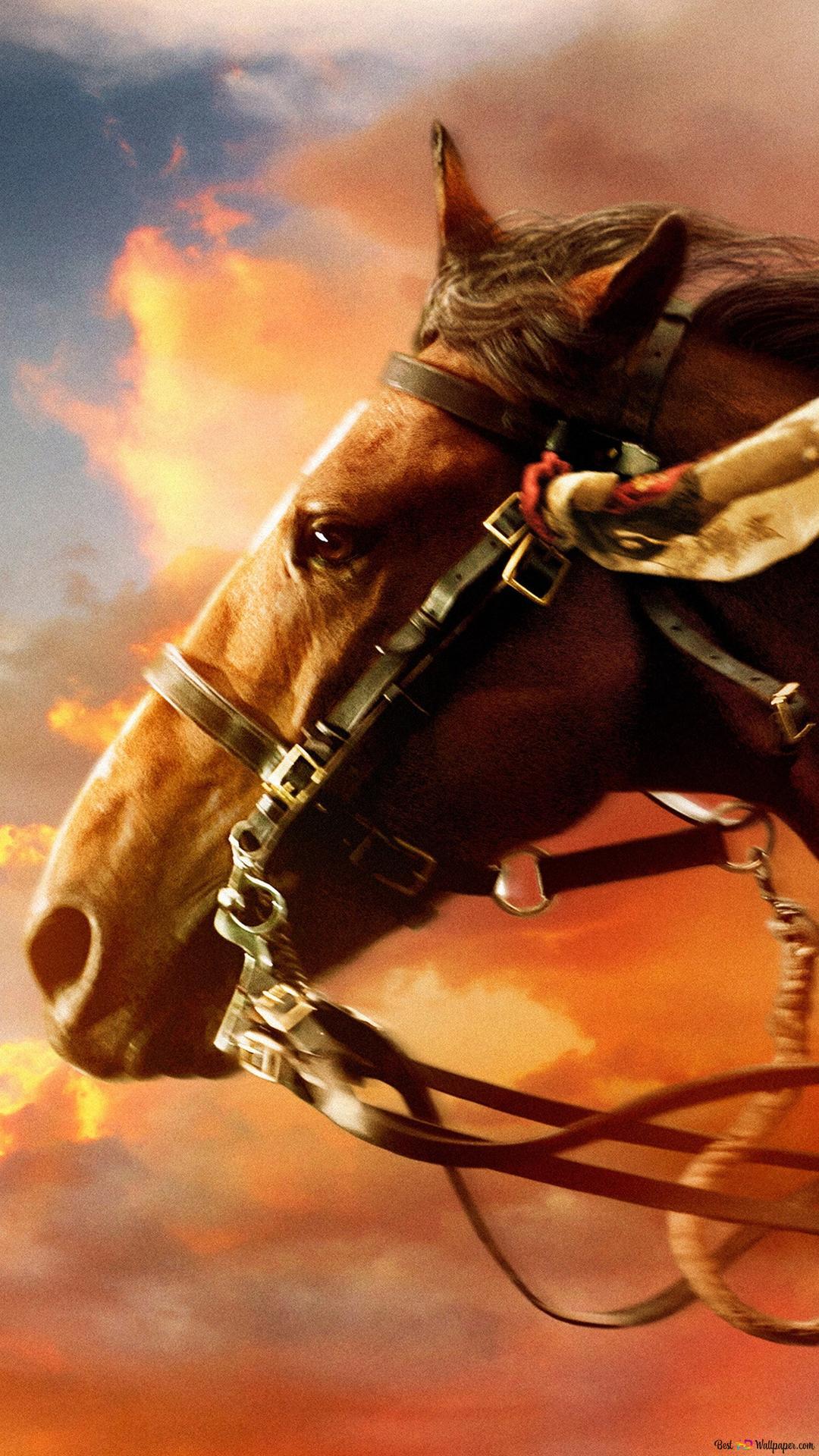 Cavallo In Fiamme Download Di Sfondi Hd