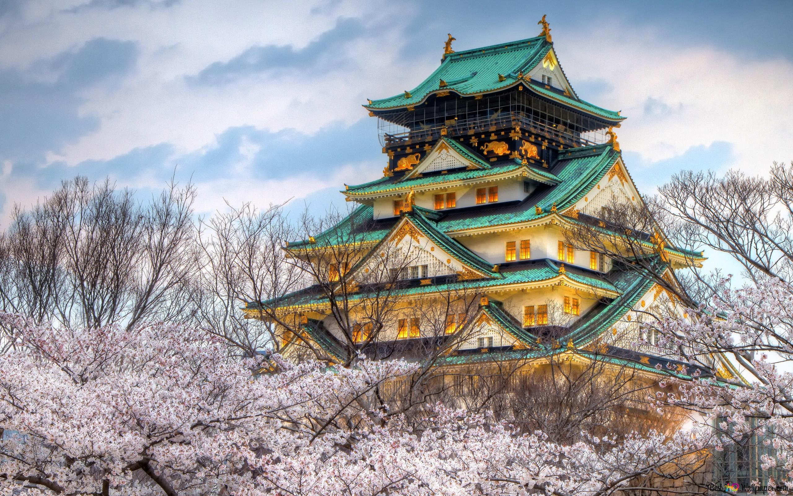 春天的花朵與大阪城高清壁紙下載