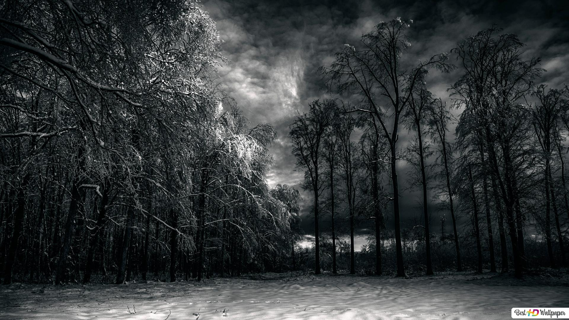 Cloudy Winter Night Hd Wallpaper Download