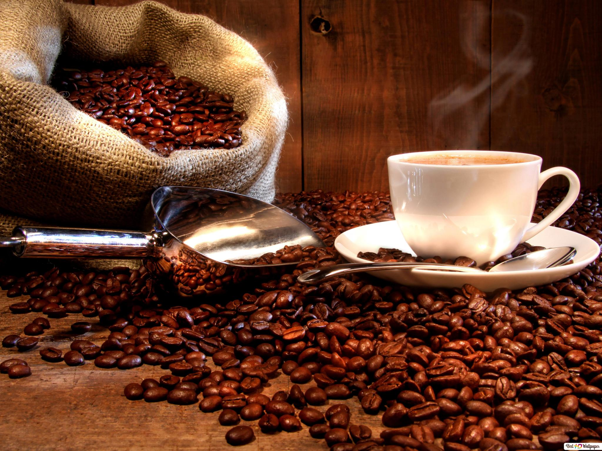 Coffee Cup Hd Wallpaper Download
