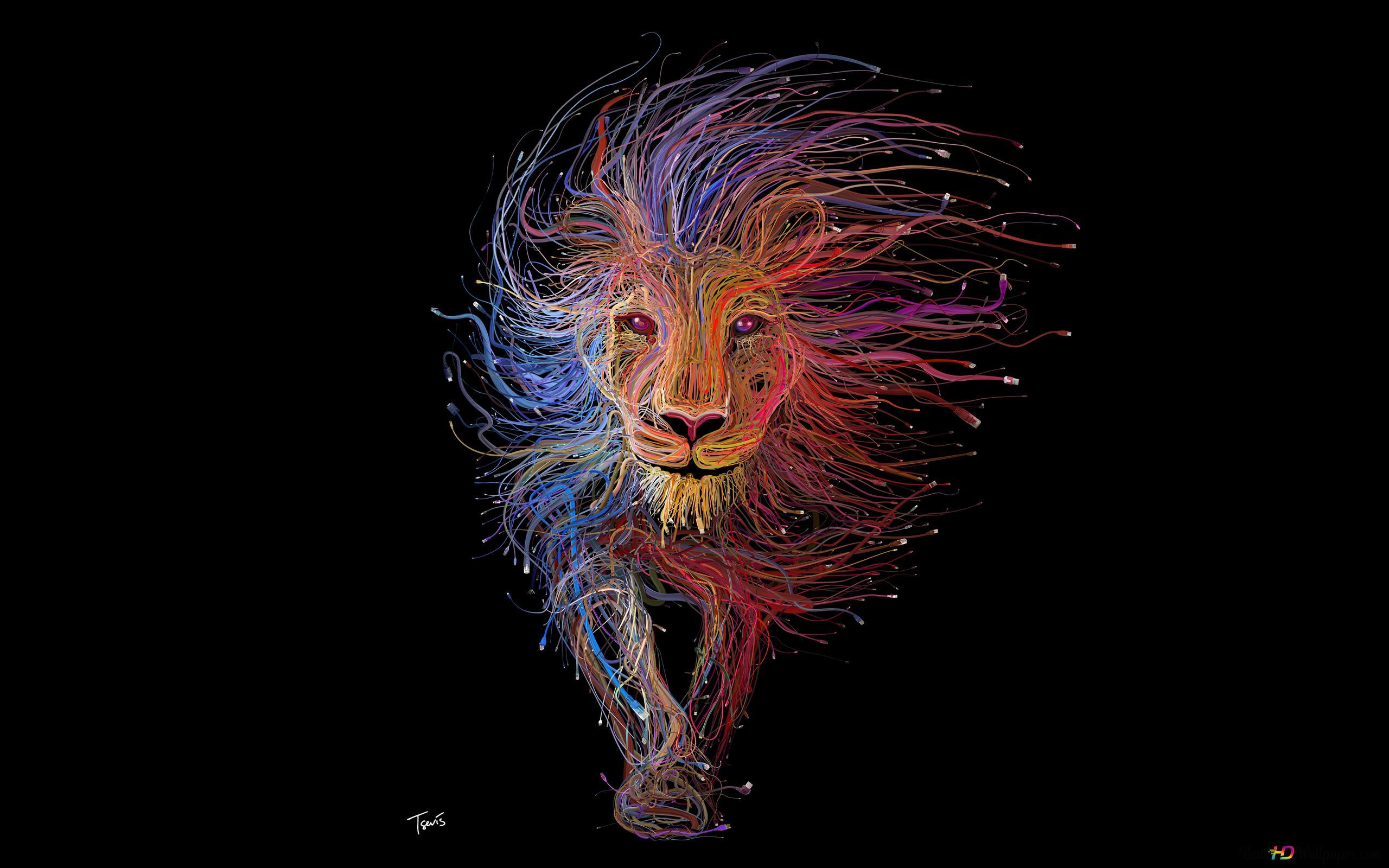 colorful lion wallpaper 2560x1600 26758 7