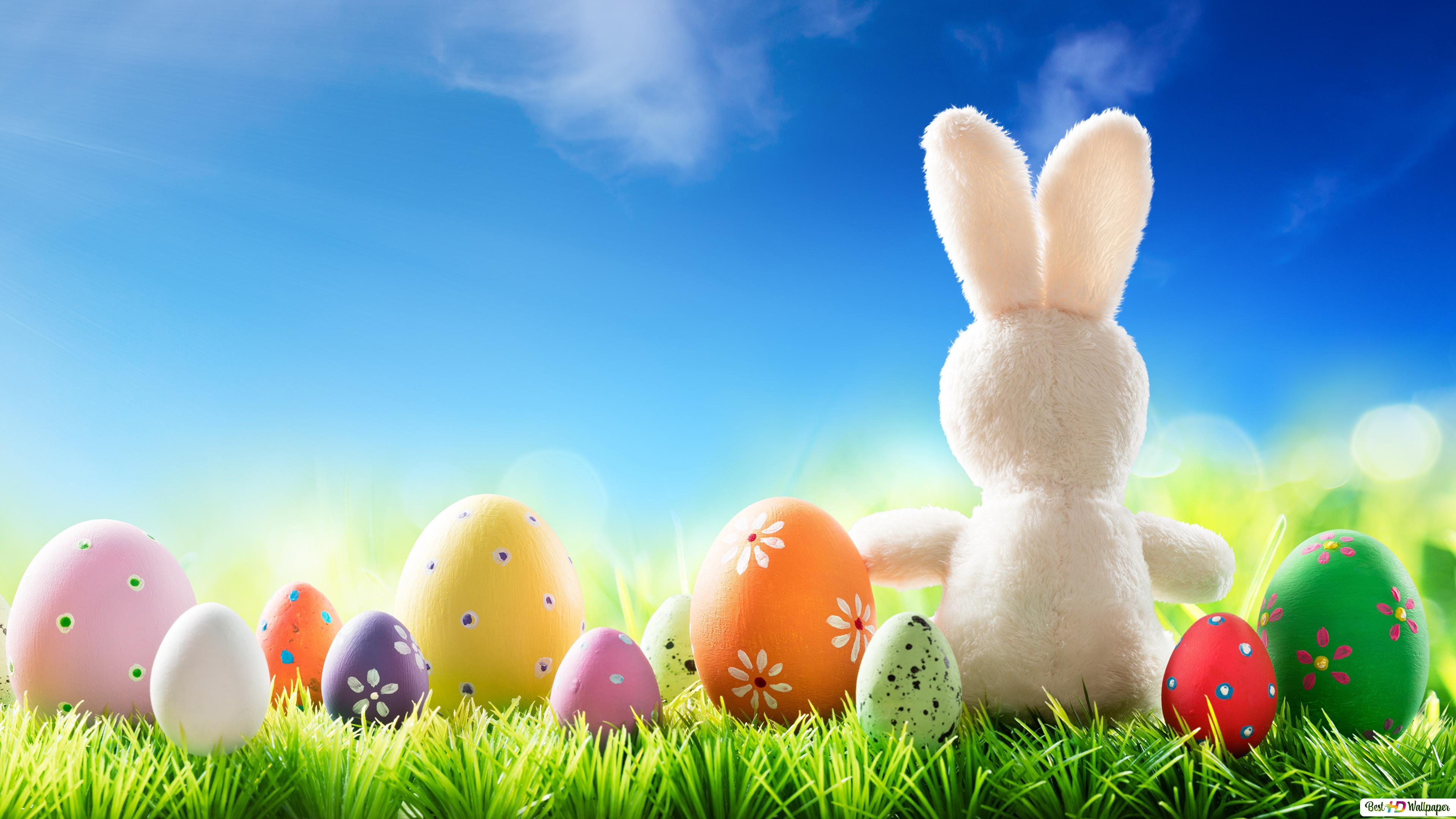 Cute Easter Bunny With Colorful Eggs Hd Wallpaper Download
