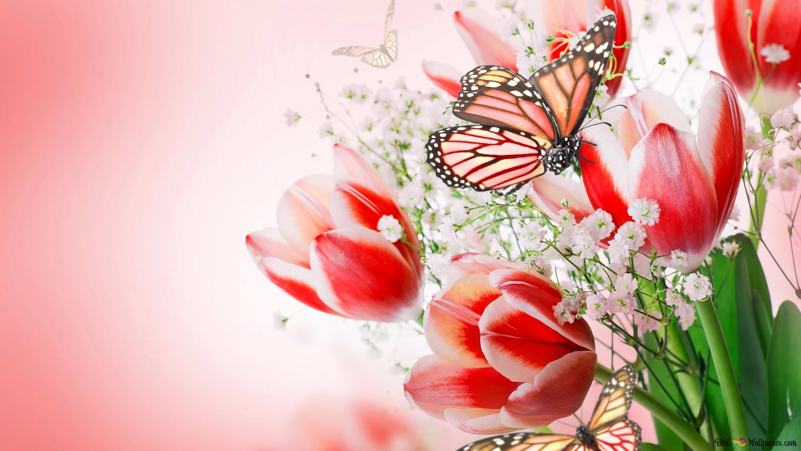 Открытка на 8 марта бабочка
