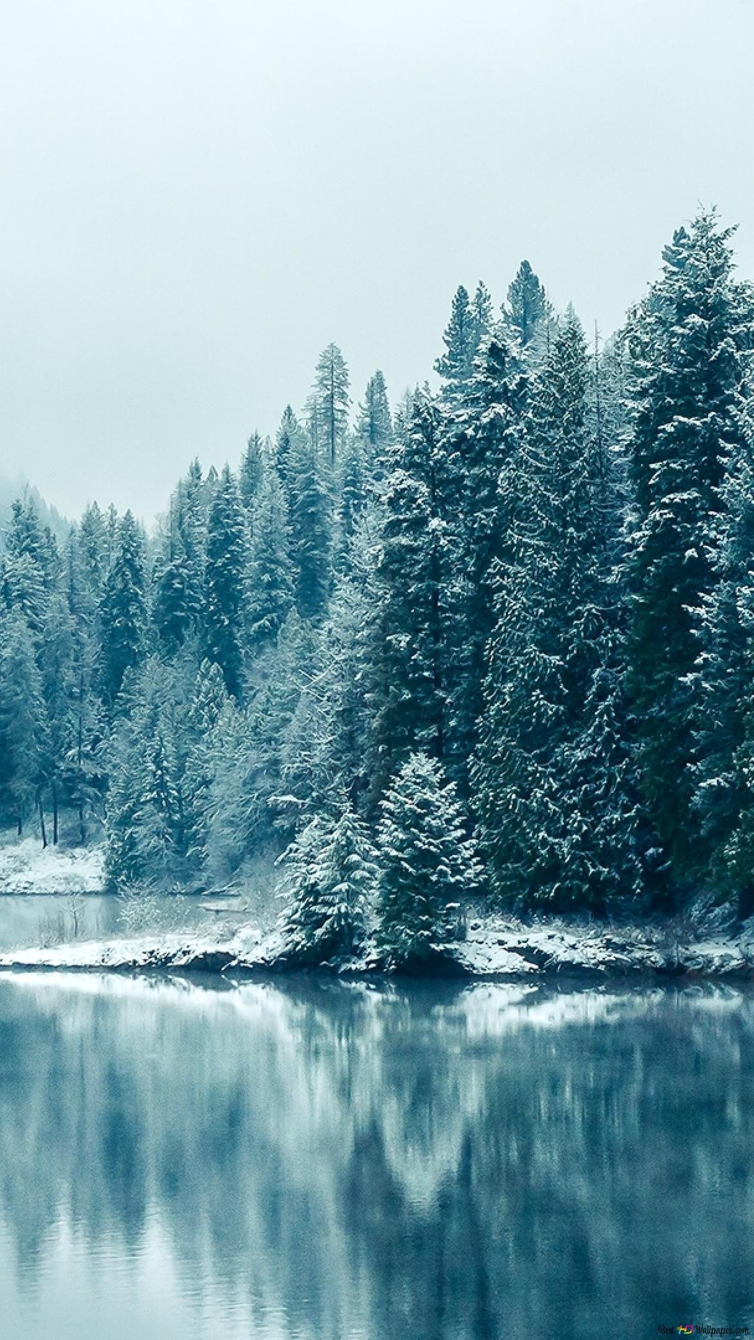 冬はここに来ています Hd壁紙のダウンロード