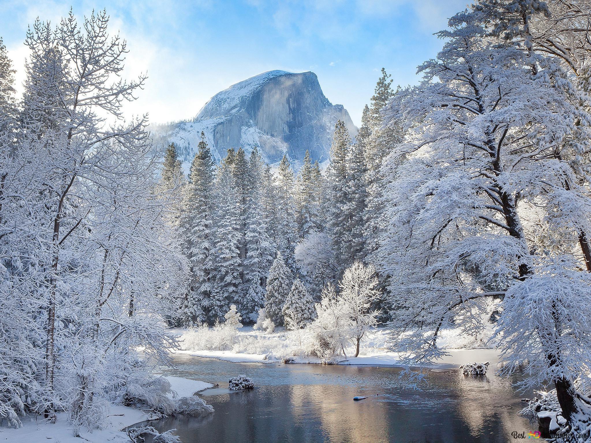 冬の風景 Hd壁紙のダウンロード