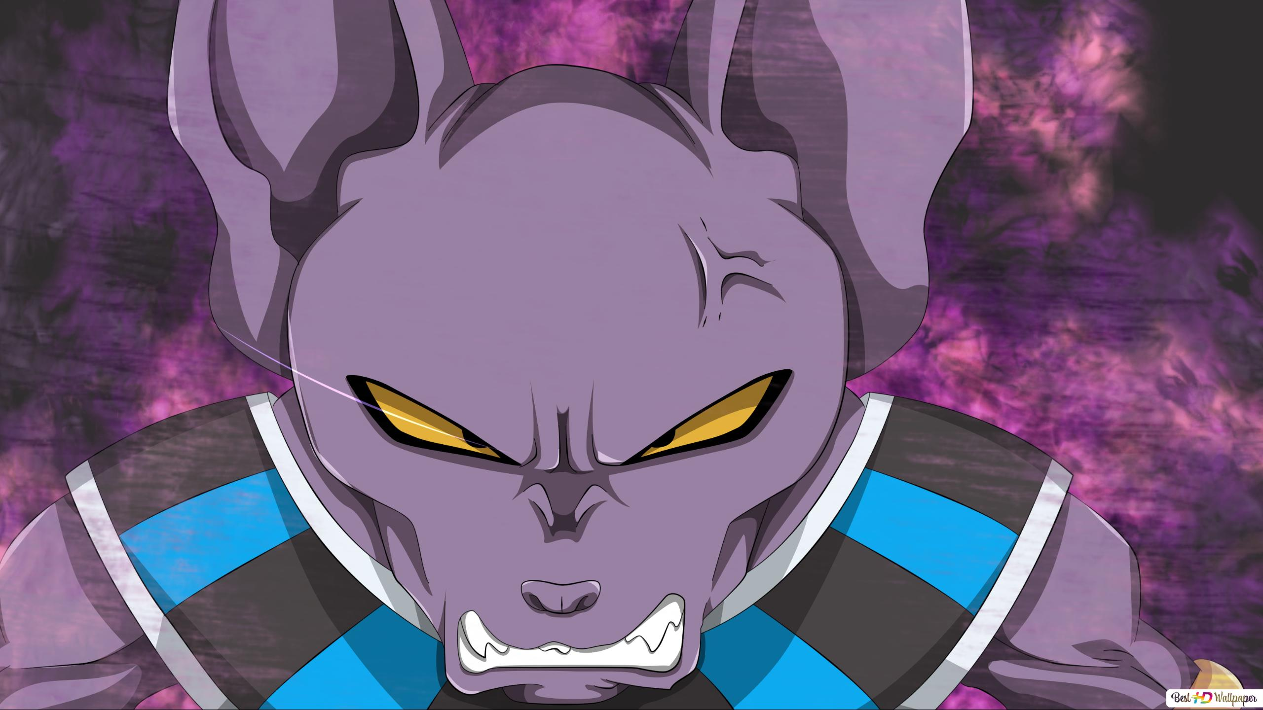Dragon Ball Super Beerus Unduhan Wallpaper Hd