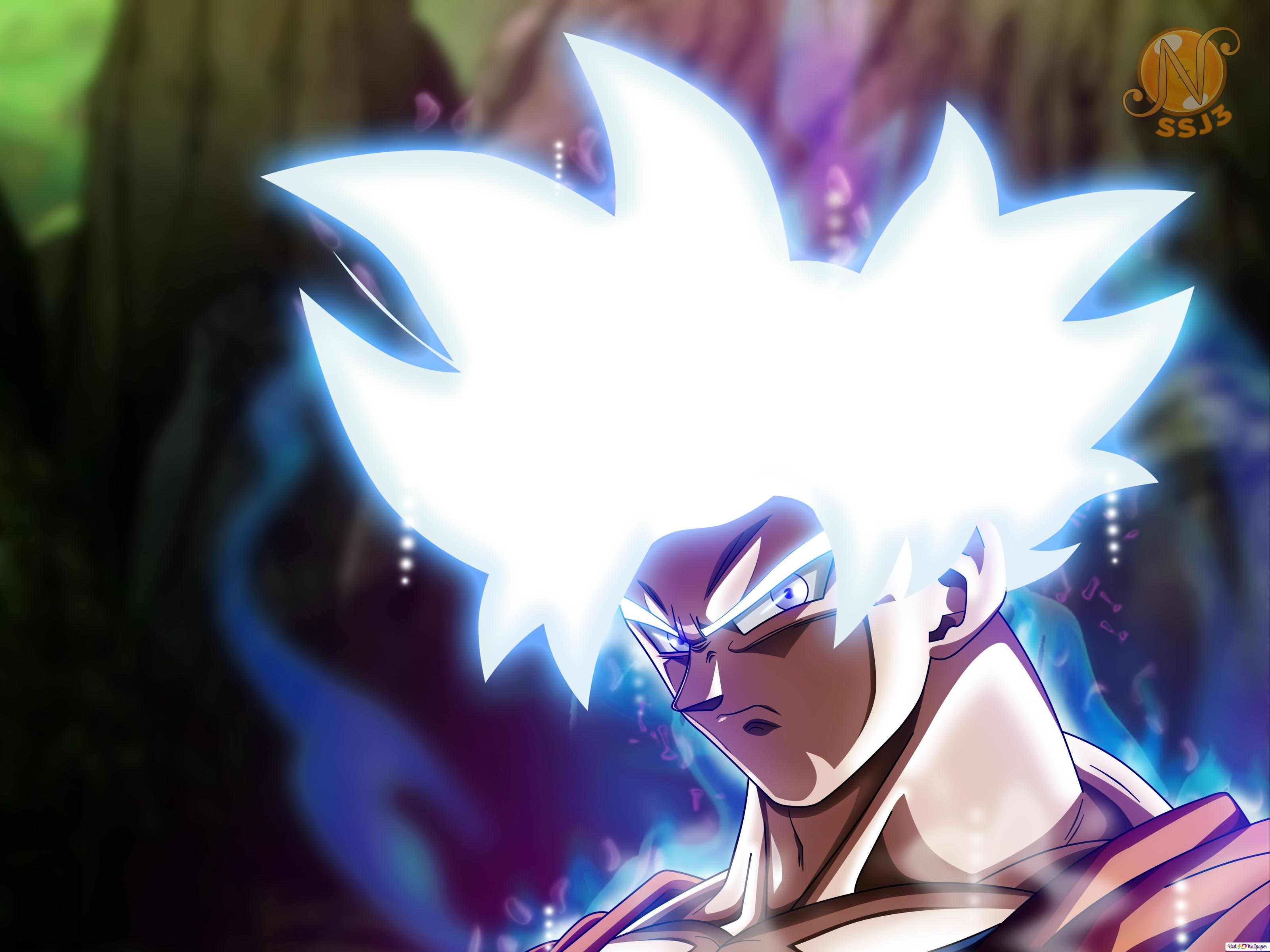 Dragon Ball Super Goku Mastered Ultra Instinct Hd Wallpaper Download