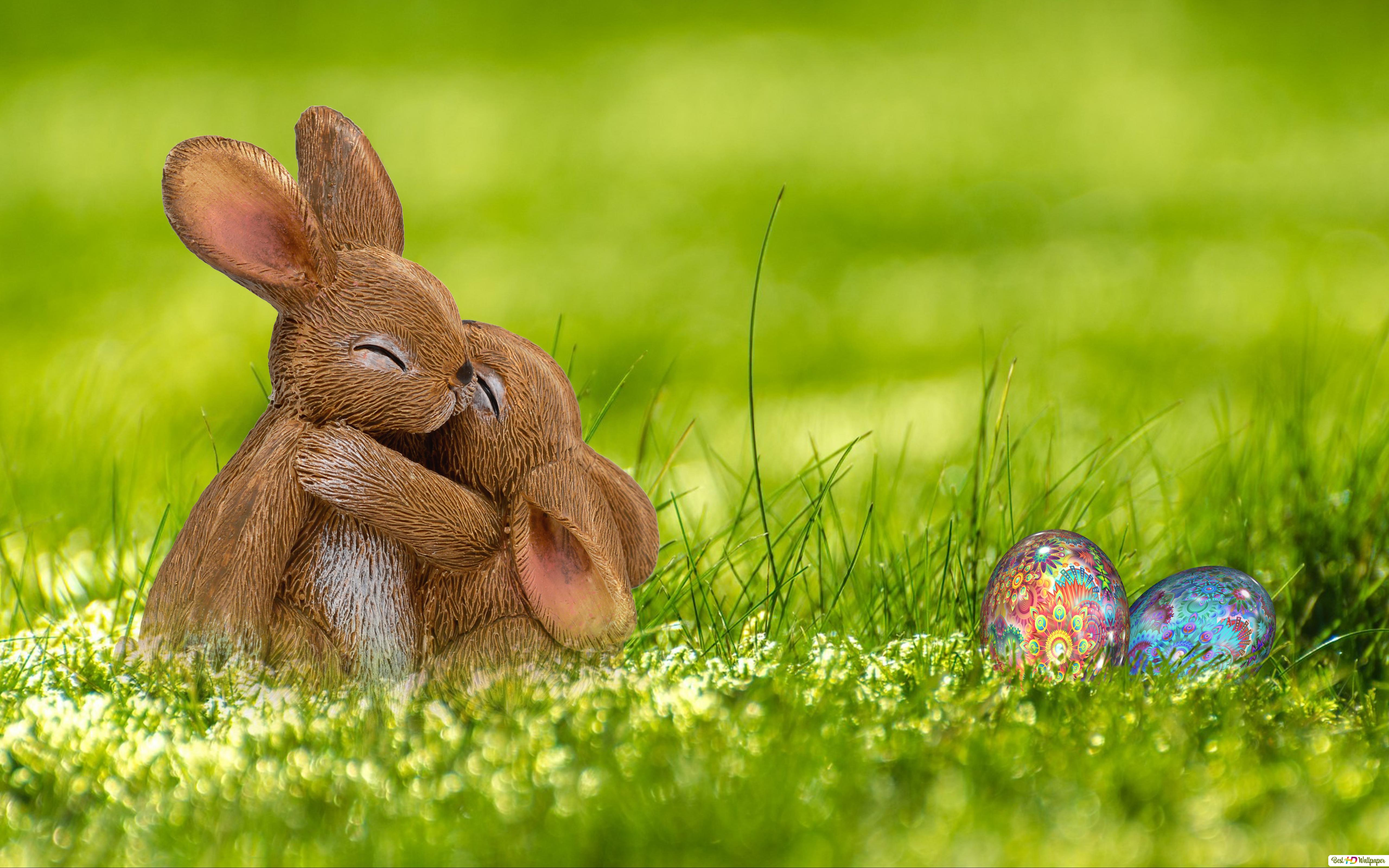 Easter Bunny Couple Hd Wallpaper Download