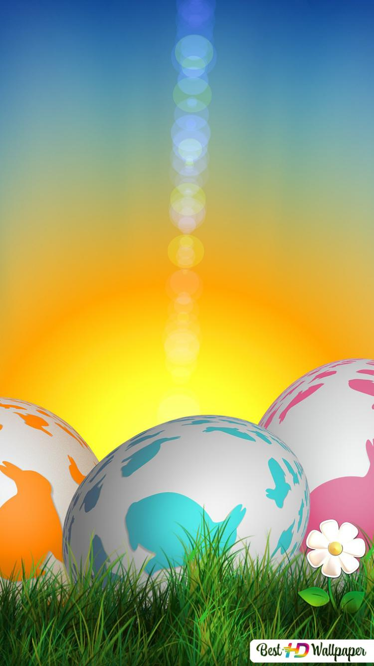 Easter Eggs Colorful Hd Wallpaper Download