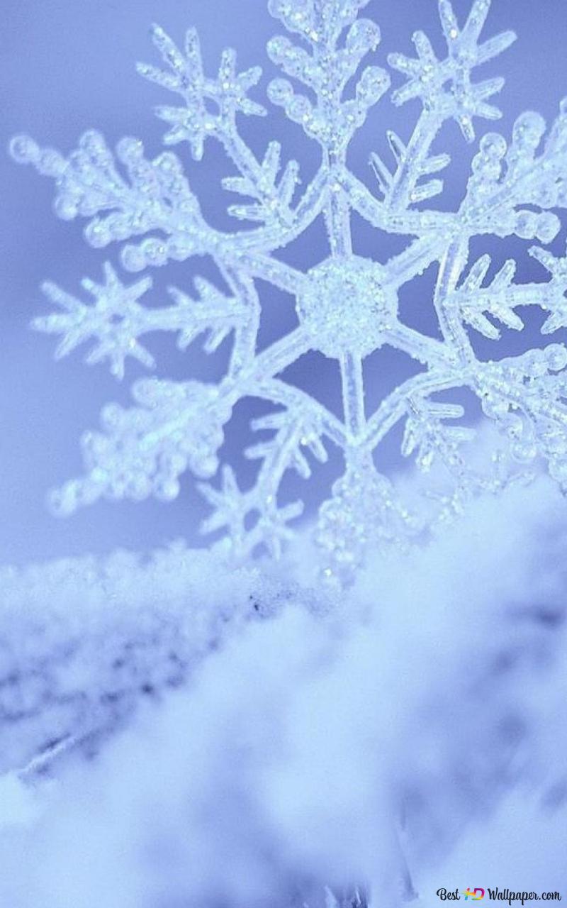 Einzelne Schneeflocke und Schnee HD Hintergrundbilder herunterladen