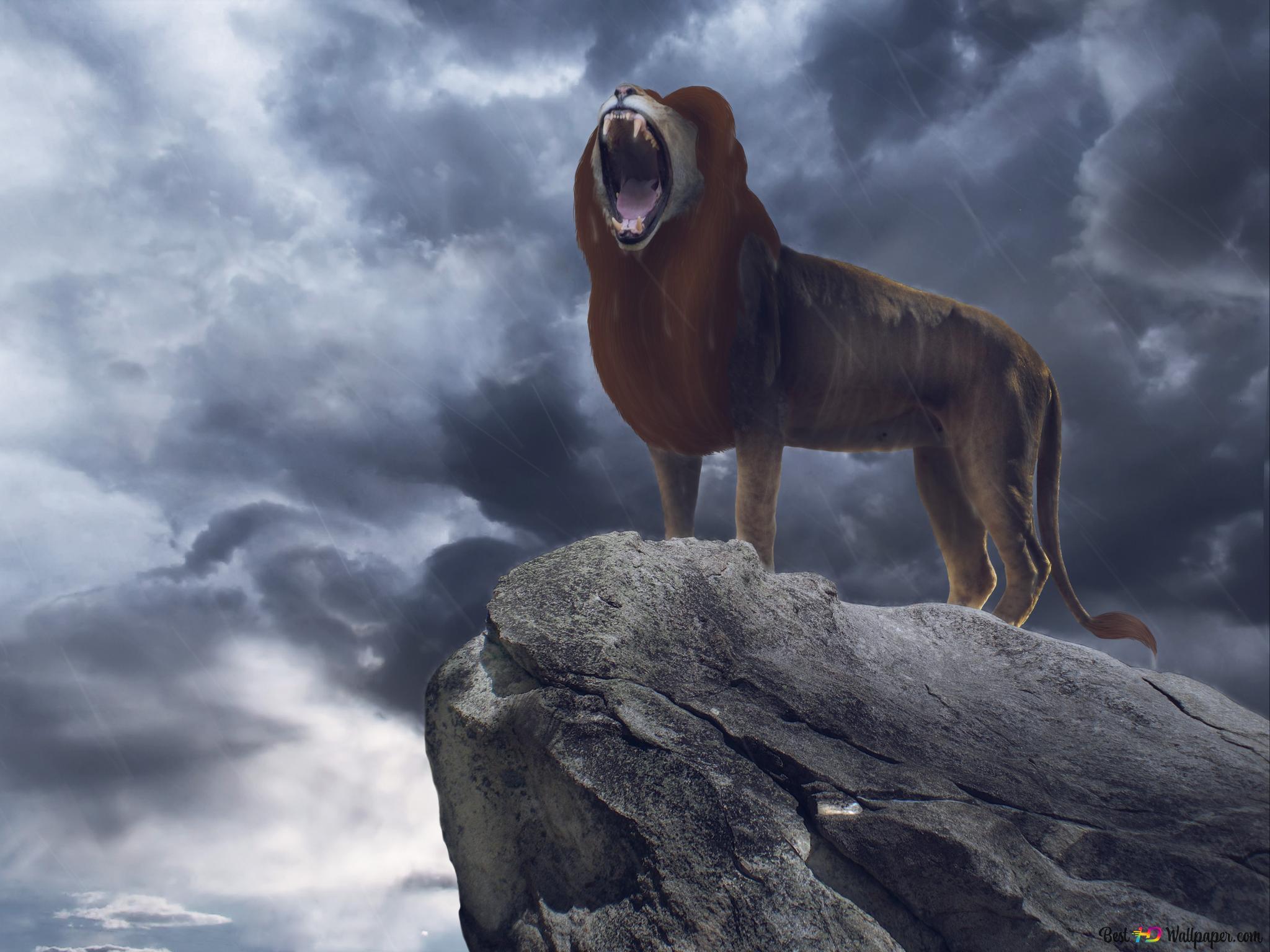 Descargar Fondo De Pantalla El Rey León Simba Hd