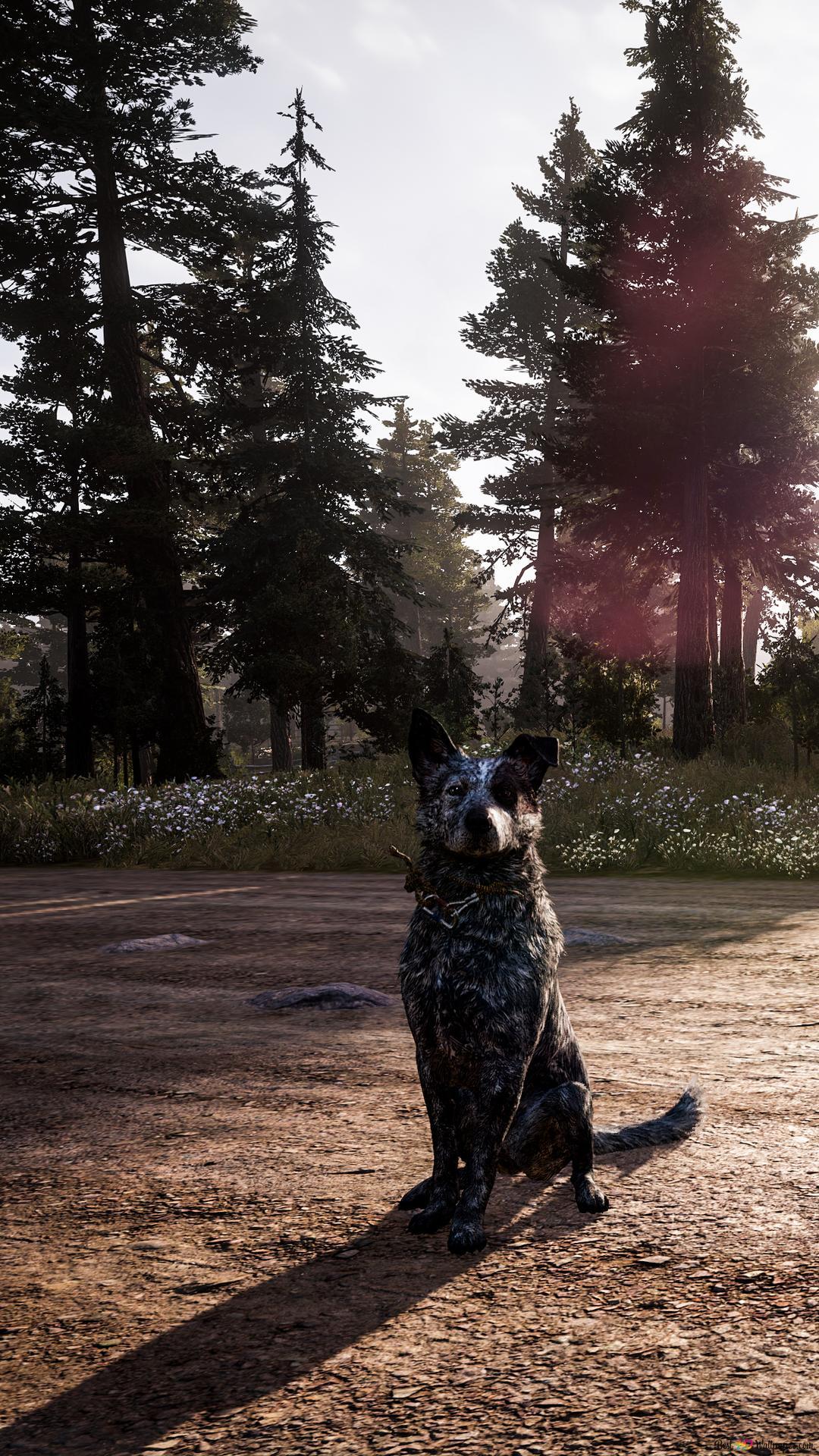 Far Cry 5 The Platters A Loyal Friend Hd Wallpaper Download