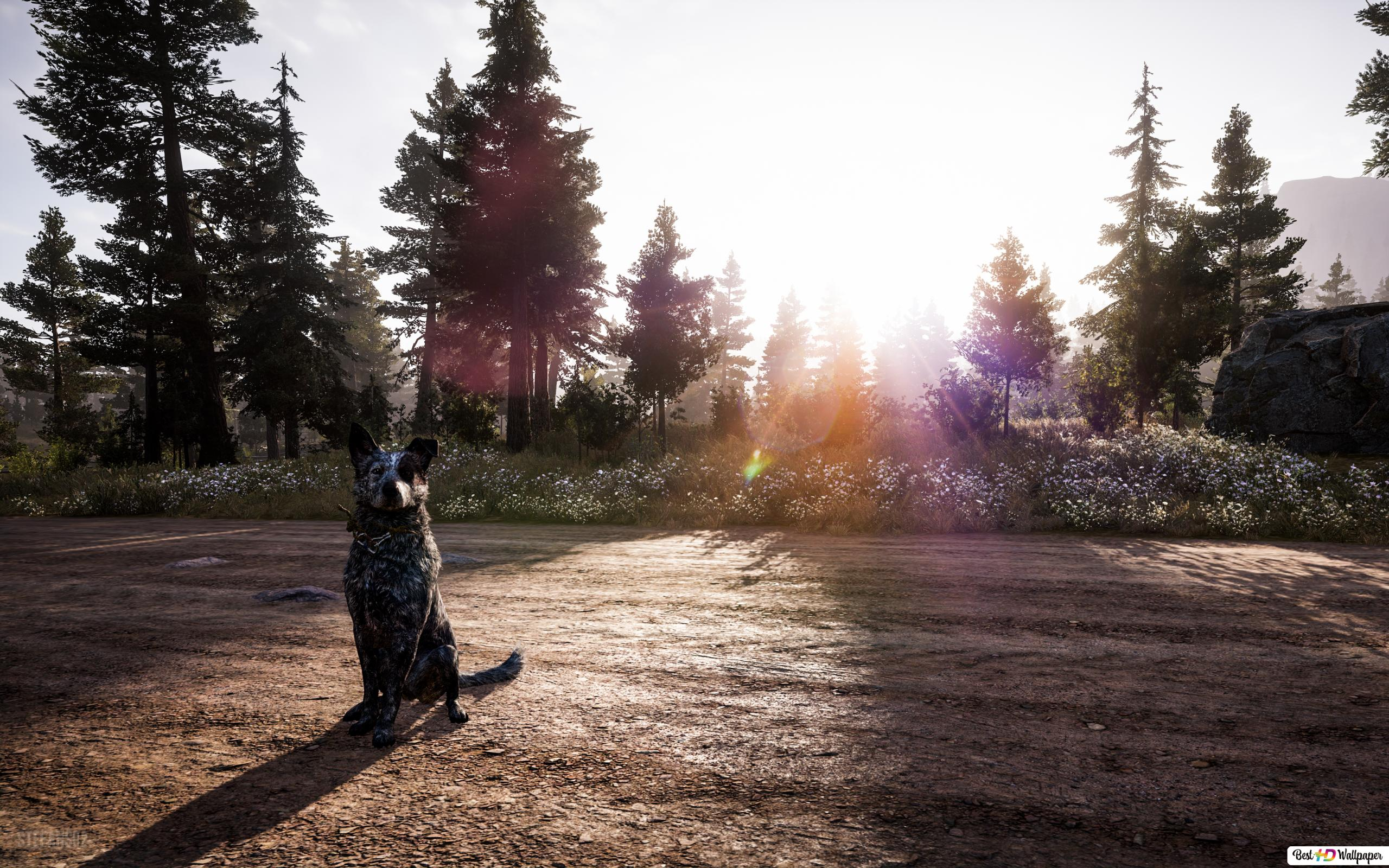 Far Cry 5 The Platters A Loyal Friend Hd Wallpaper Download