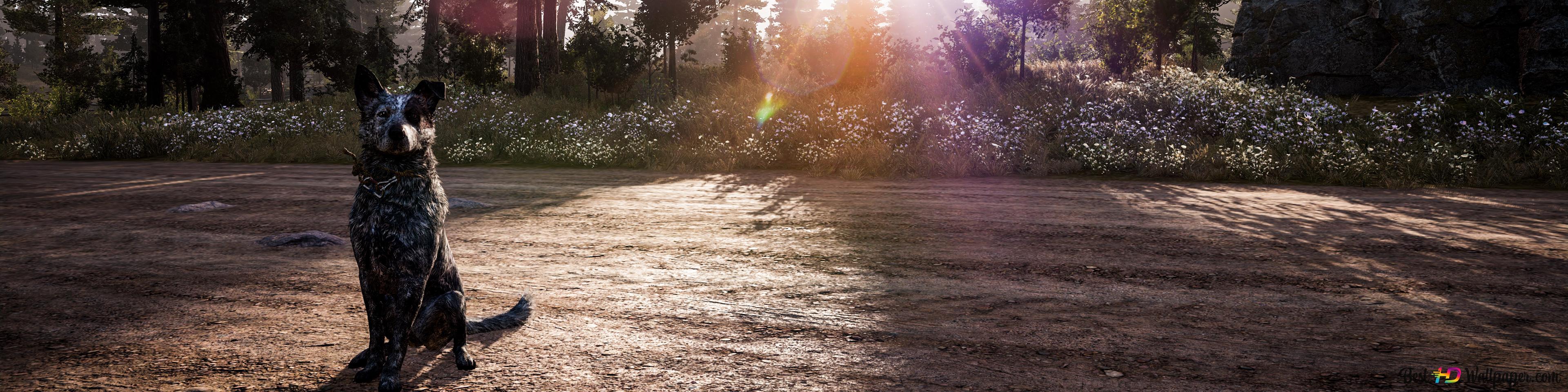 Far Cry 5: The Platters -A Loyal Friend HD wallpaper download