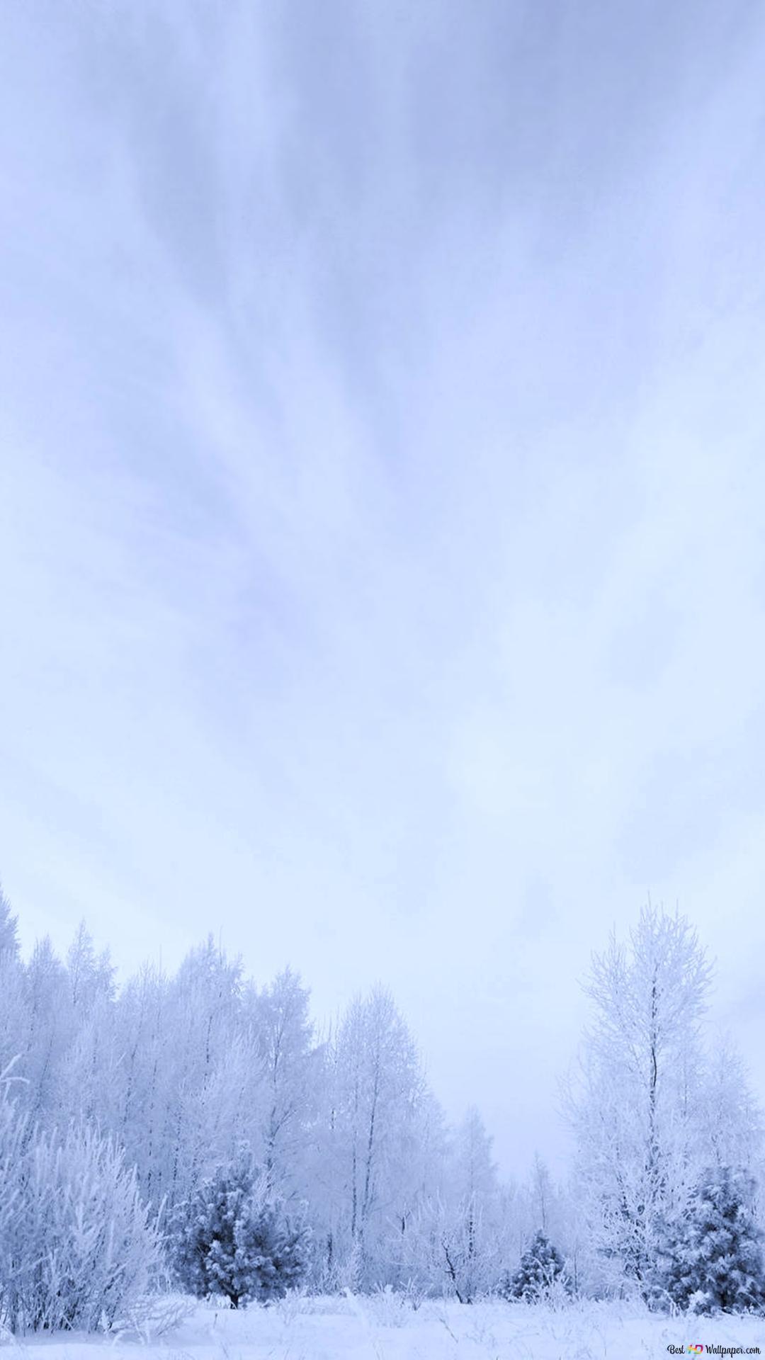非常に白い冬 Hd壁紙のダウンロード