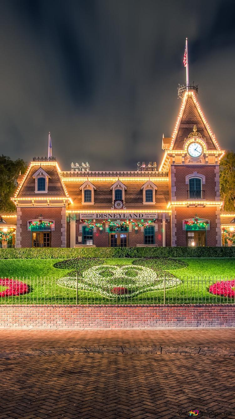 Flower Garden Disneyland Hd Wallpaper Download