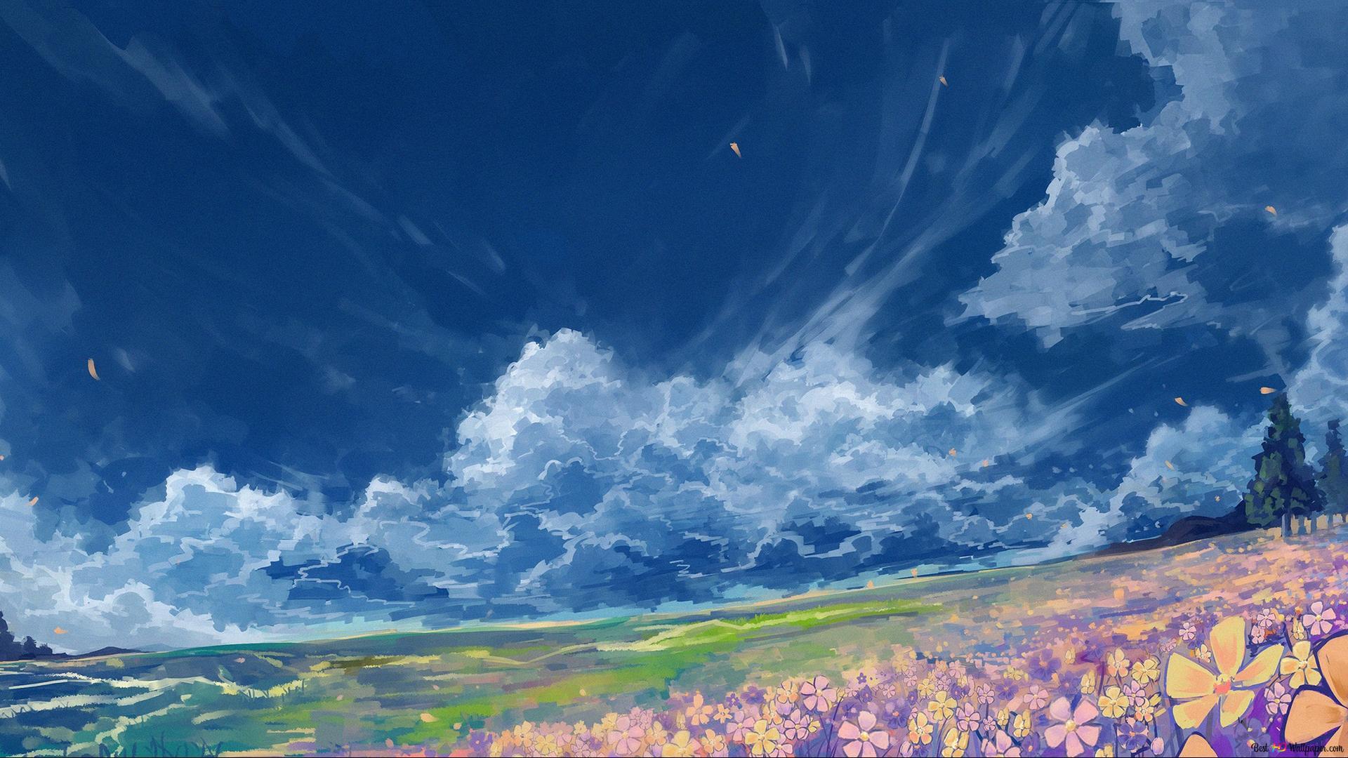 Flowers Field Hd Wallpaper Download