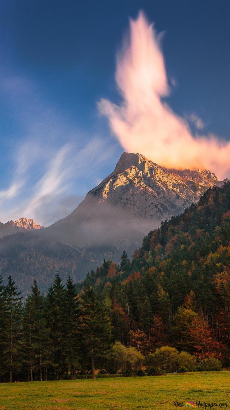 Foresta E Le Montagne Download Di Sfondi Hd