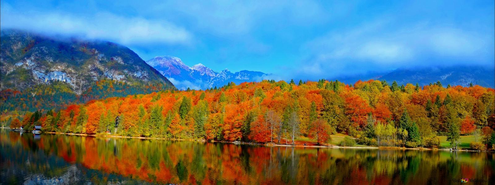 foto de forêt d'automne dans la montagne HD fond d'écran télécharger
